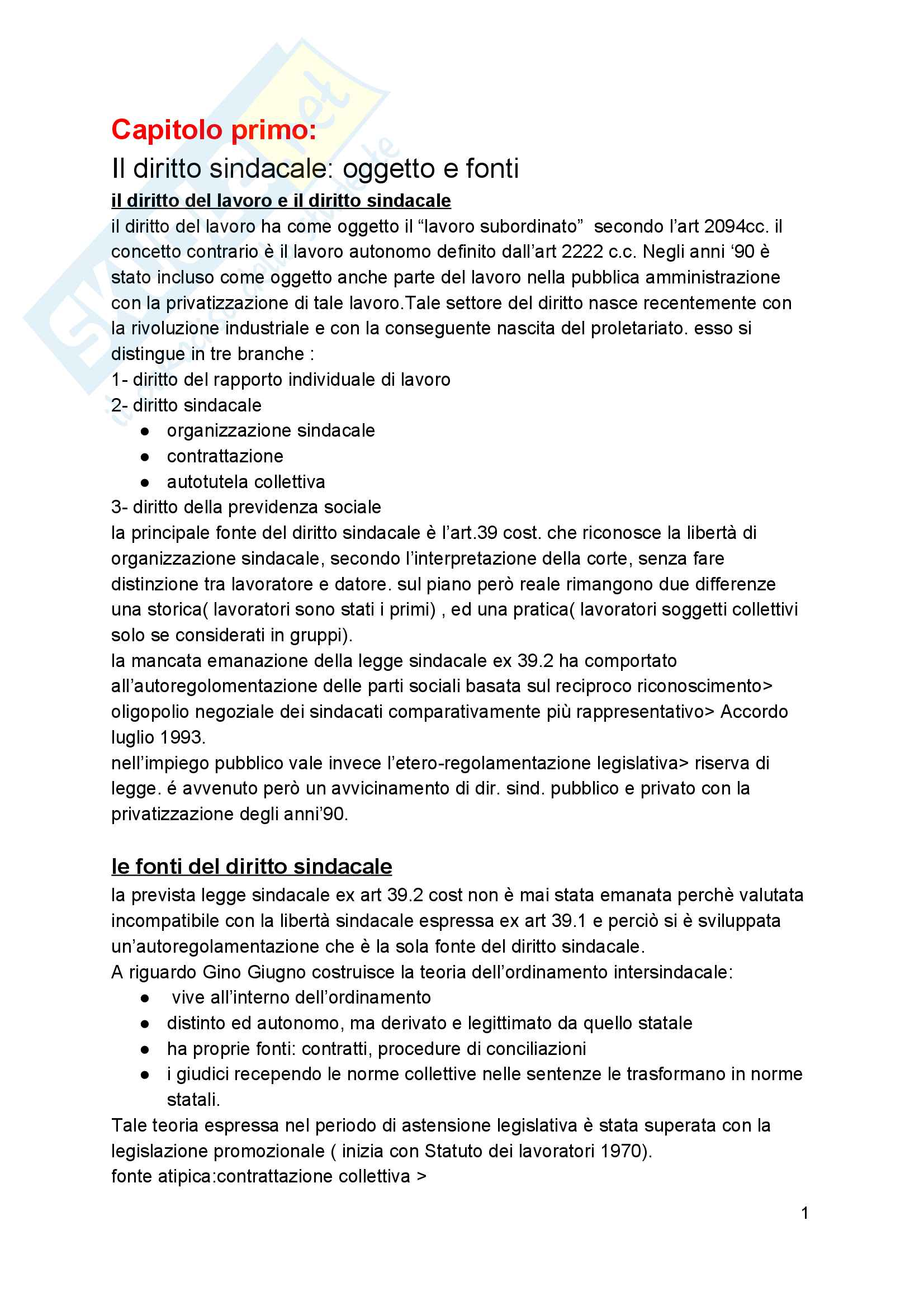 Riassunto esame diritto sindacale, docente Sandro Mainardi