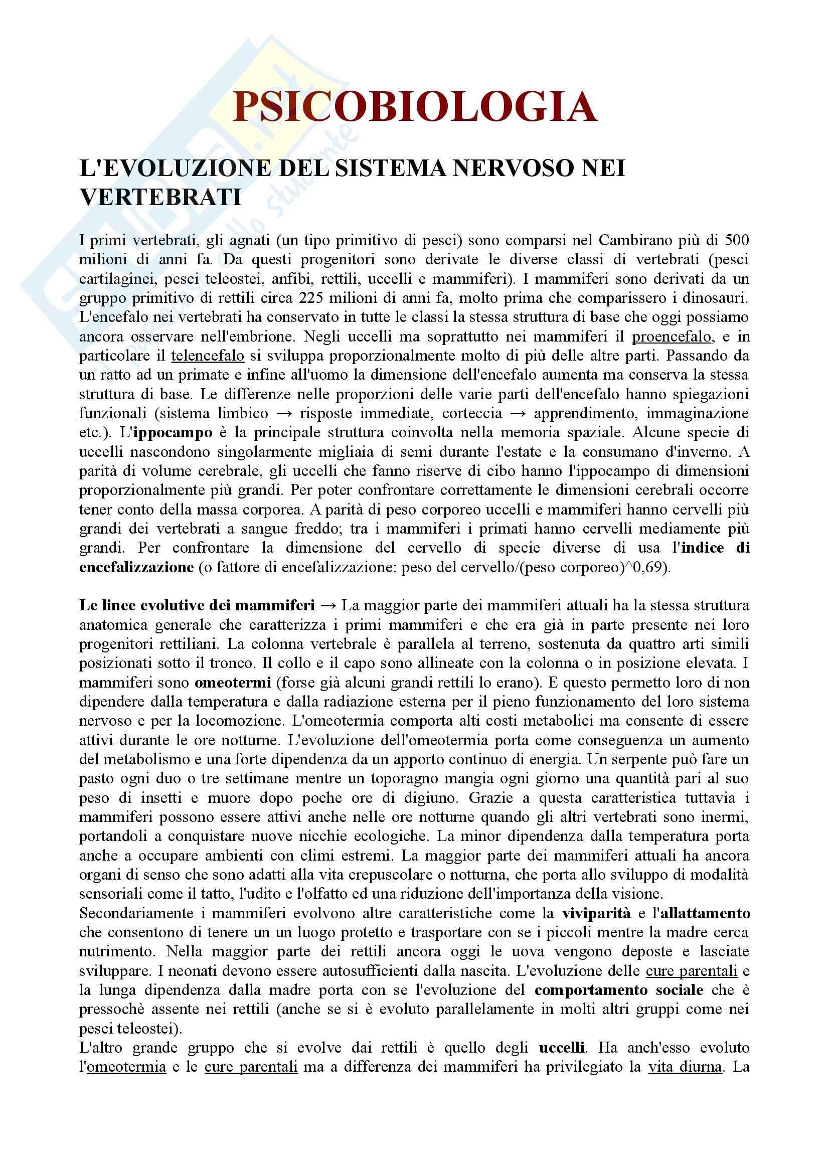 Psicobiologia - evoluzione del sistema nervoso nei vertebrati