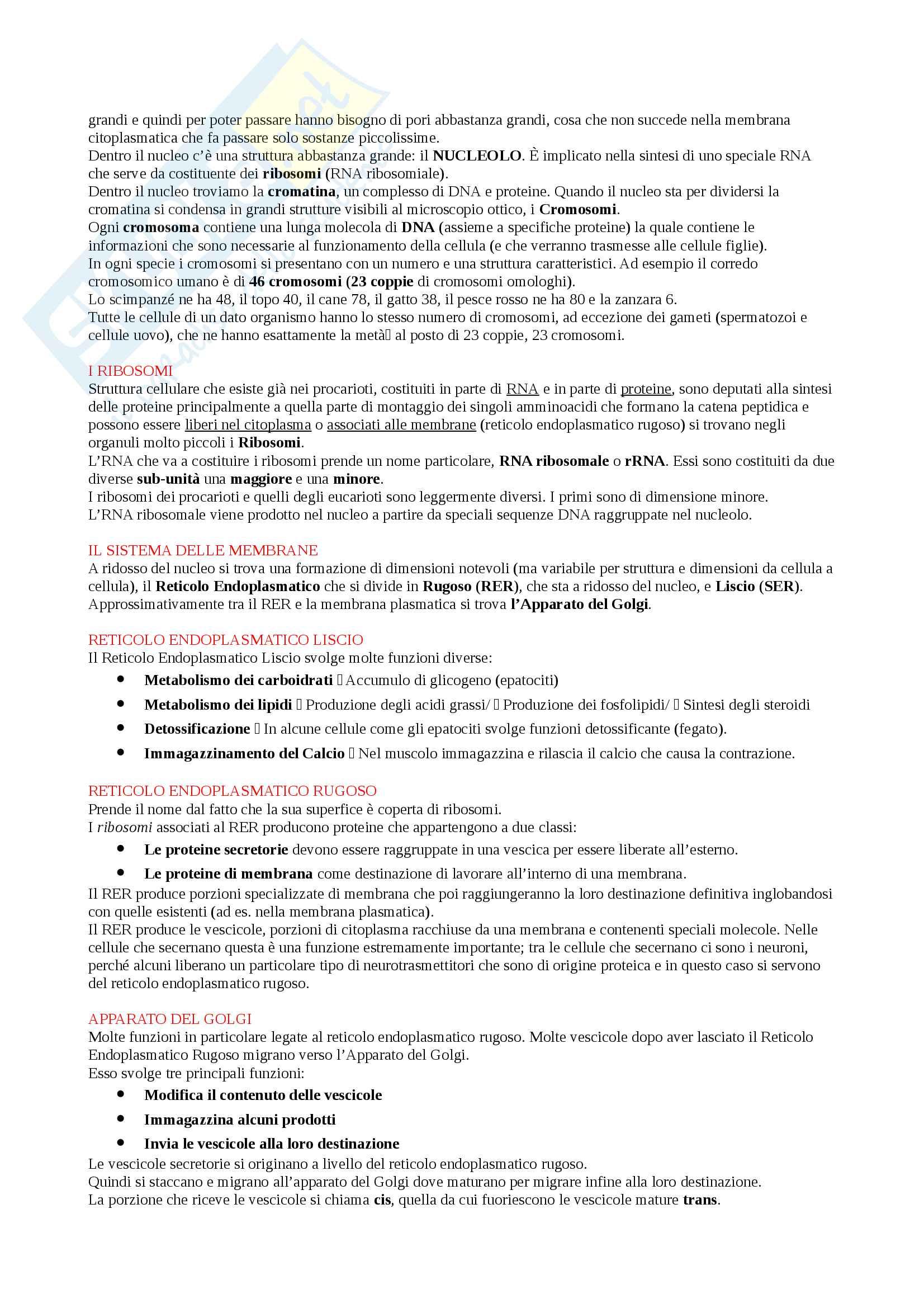 Appunti Biologia-Chimica per superare OFA!! Utile anche per superare il Test d'ingresso Pag. 16