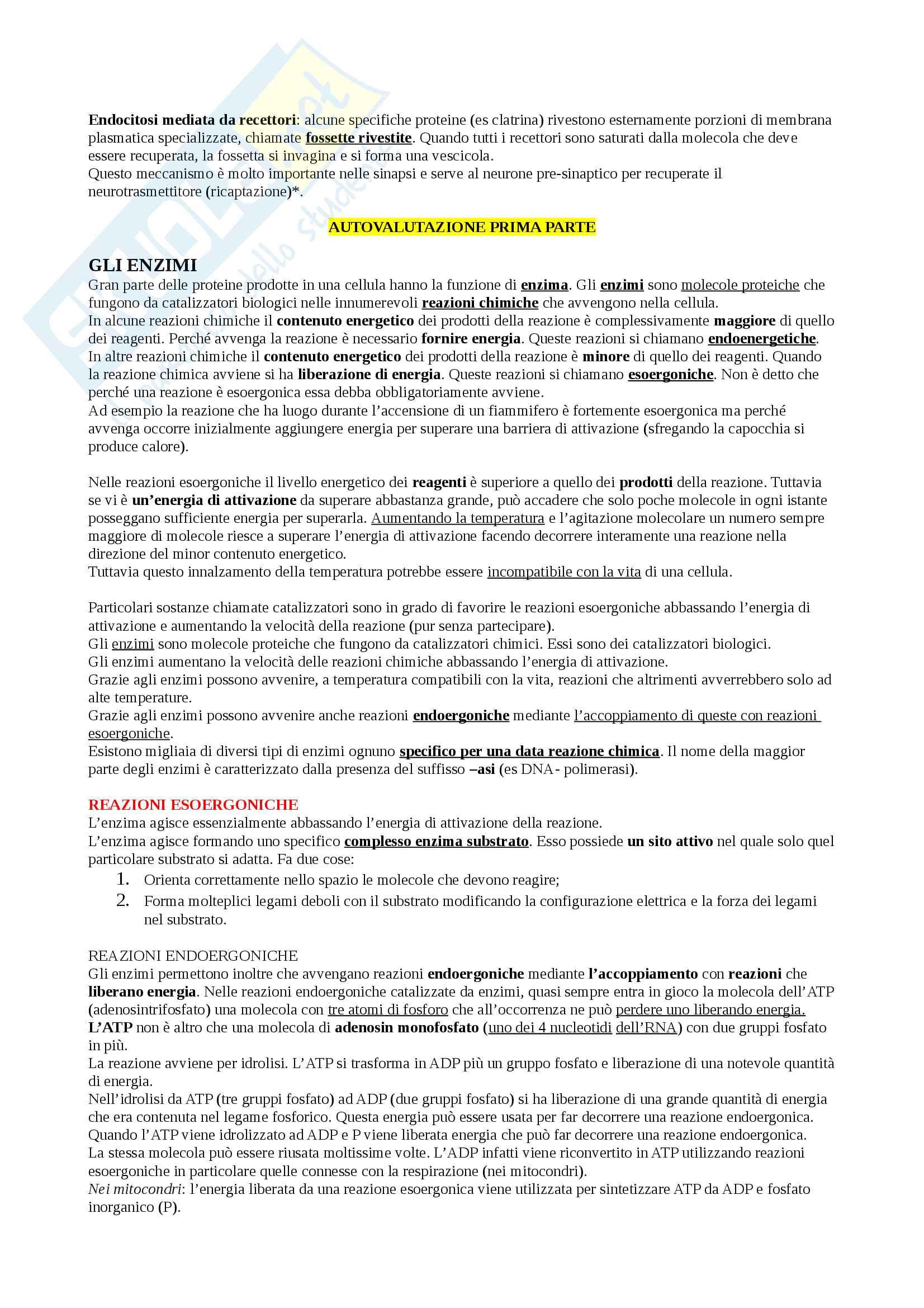 Appunti Biologia-Chimica per superare OFA!! Utile anche per superare il Test d'ingresso Pag. 21