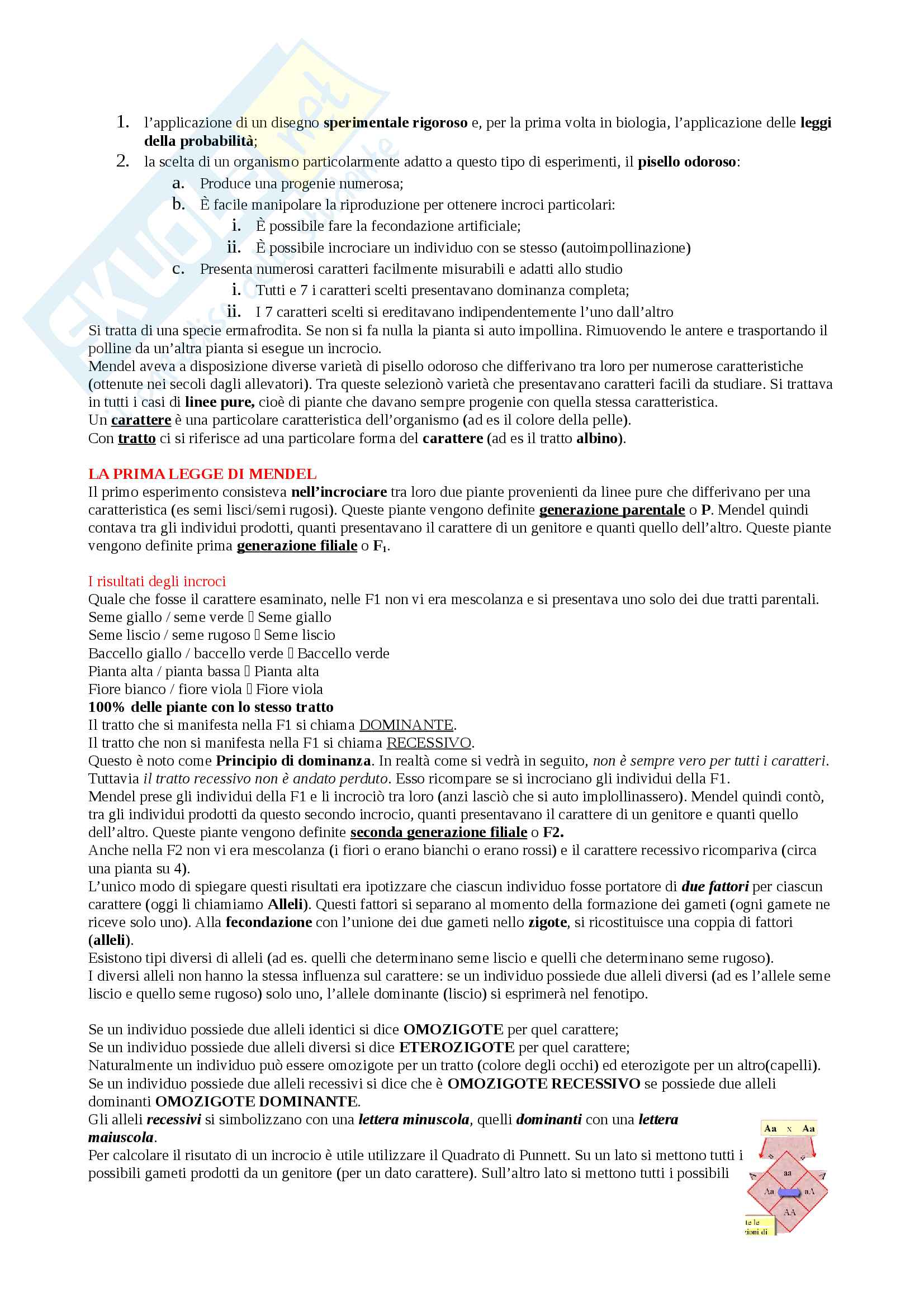 Appunti Biologia-Chimica per superare OFA!! Utile anche per superare il Test d'ingresso Pag. 31