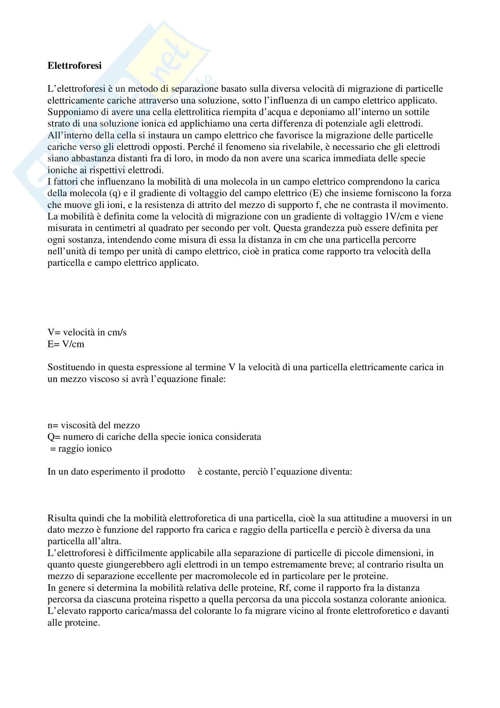 Biochimica applicata - elettroforesi