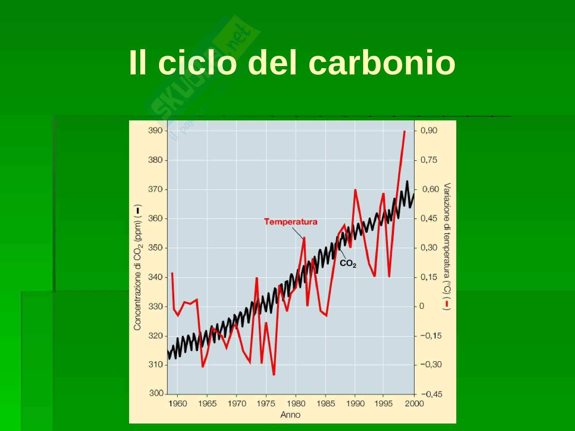 Ecologia - cicli biogeochimici Pag. 21