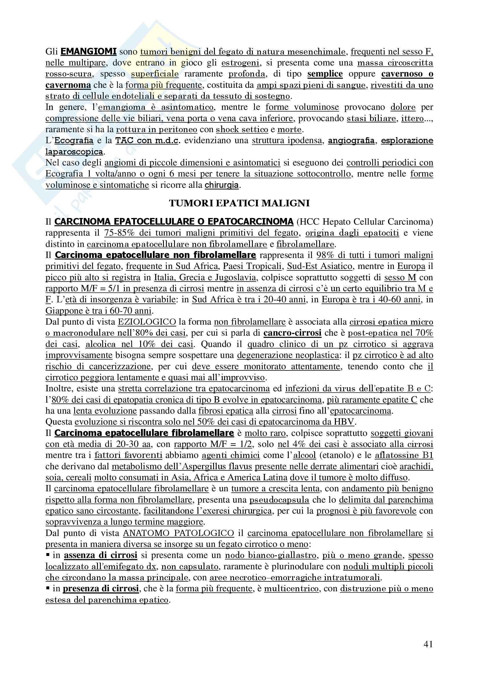 Chirurgia - chirurgia generale - Appunti Pag. 41