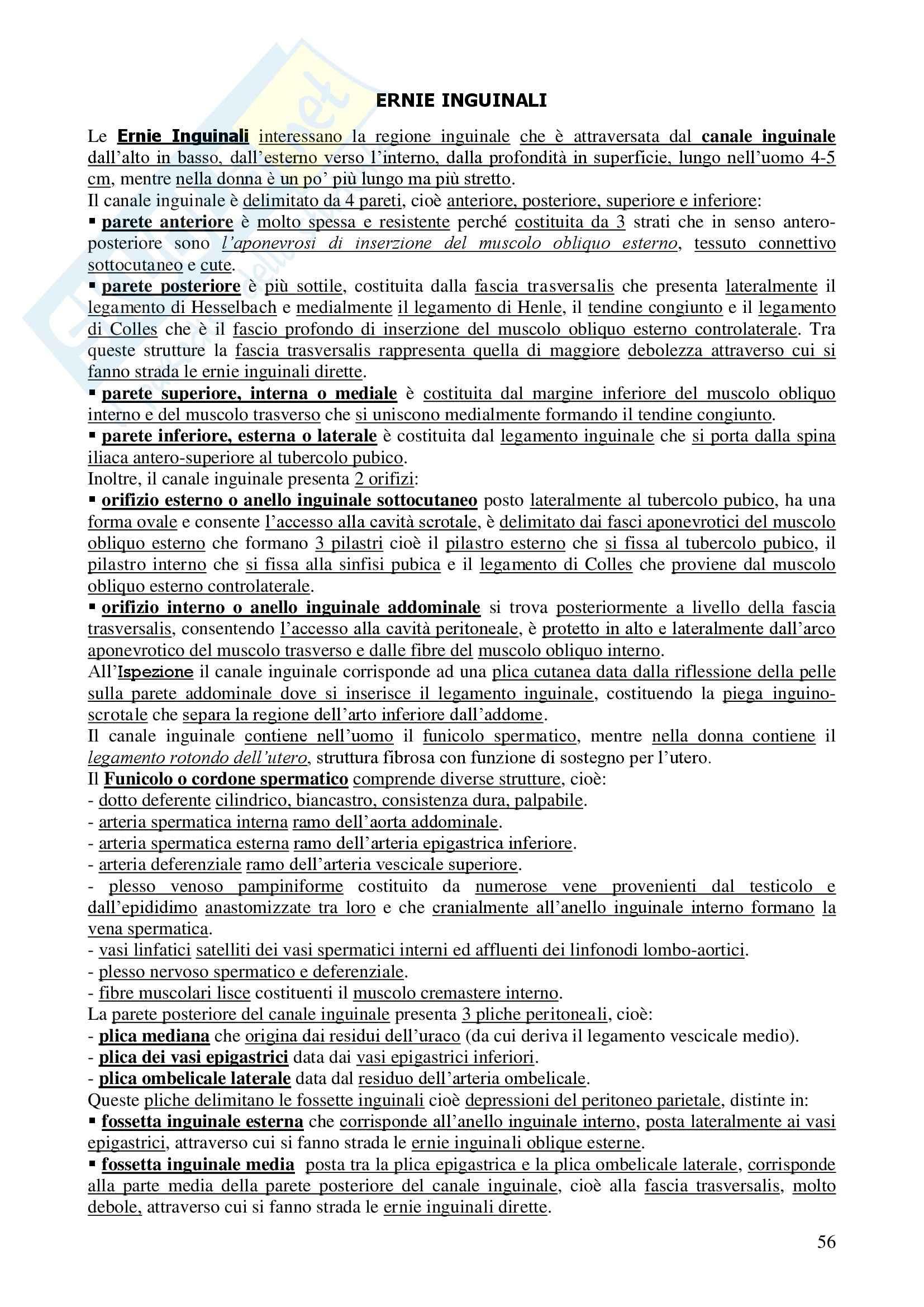 Chirurgia - chirurgia generale - Appunti Pag. 56