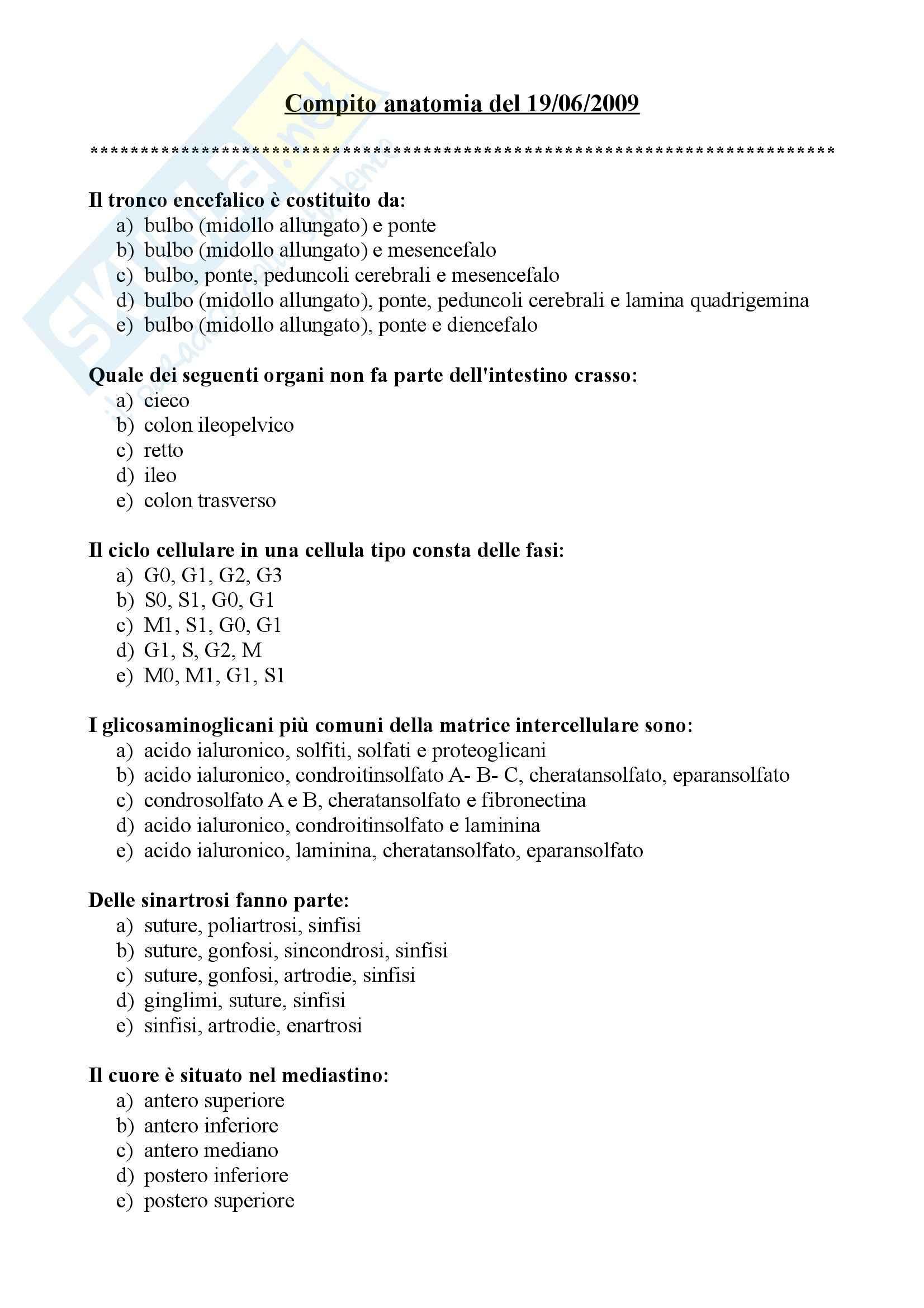 esercitazione E. Gaudio Anatomia