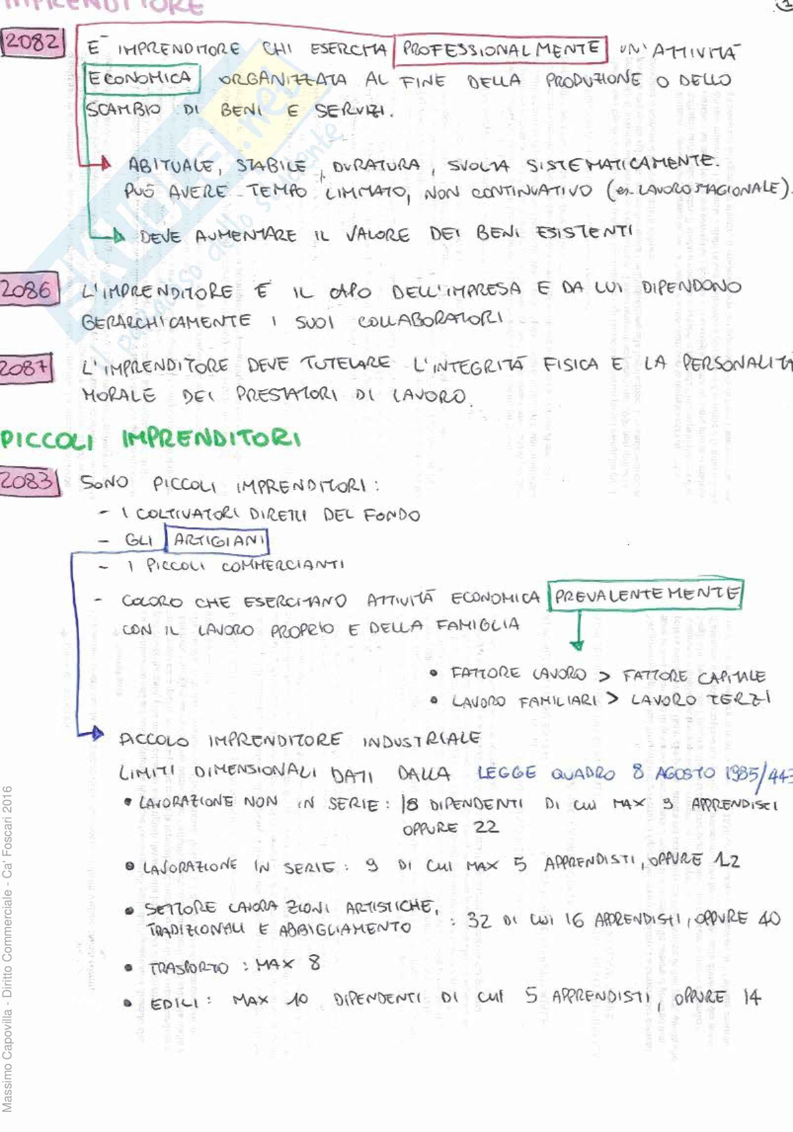 Riassunto, Appunti, Diritto Commerciale, Lorenzo De Angelis