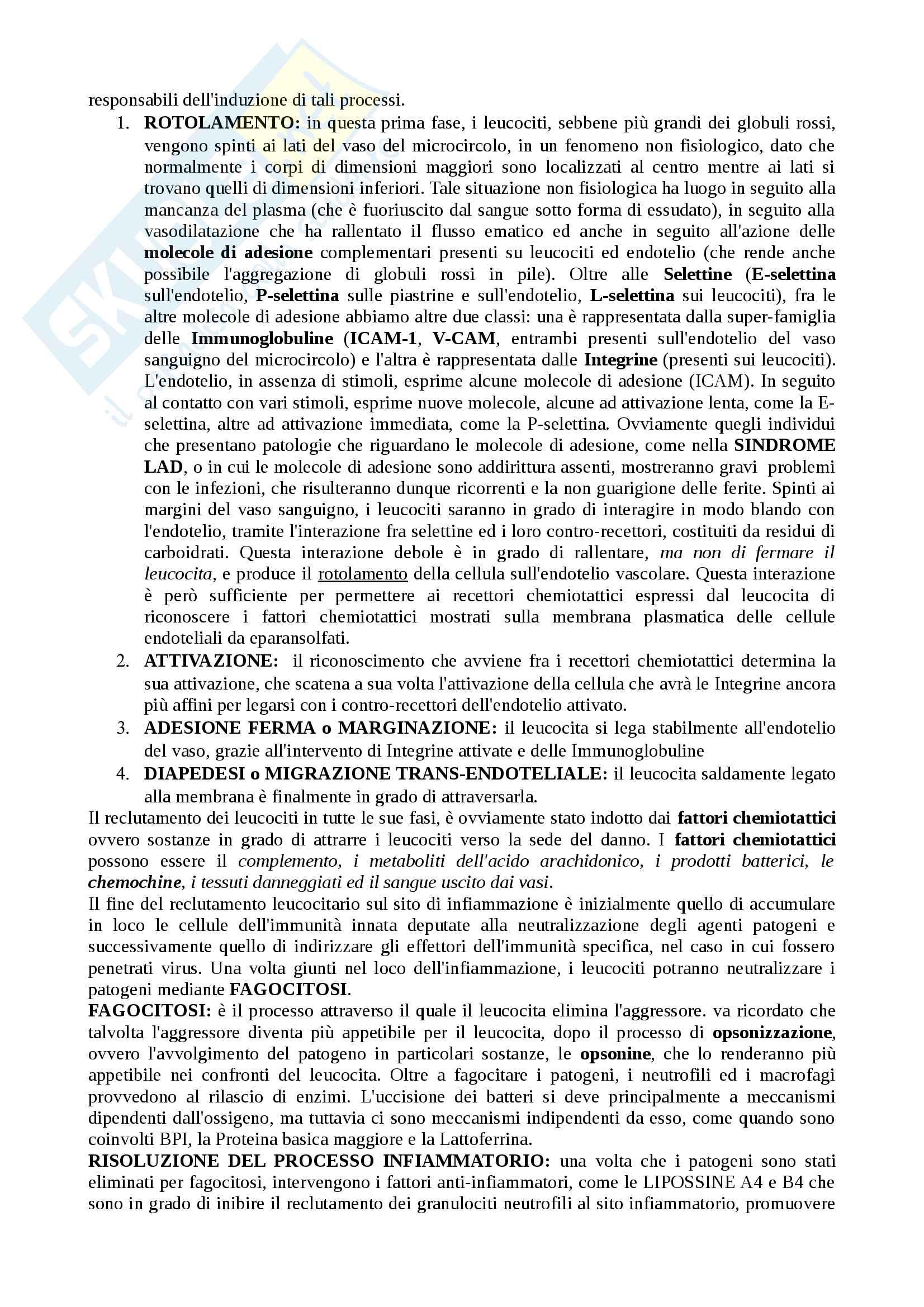 Riassunto esame patologia generale e terminologia medica, Prof. Ida Silvestri, libro consigliato Pontieri ,Frati e Celotti Pag. 36