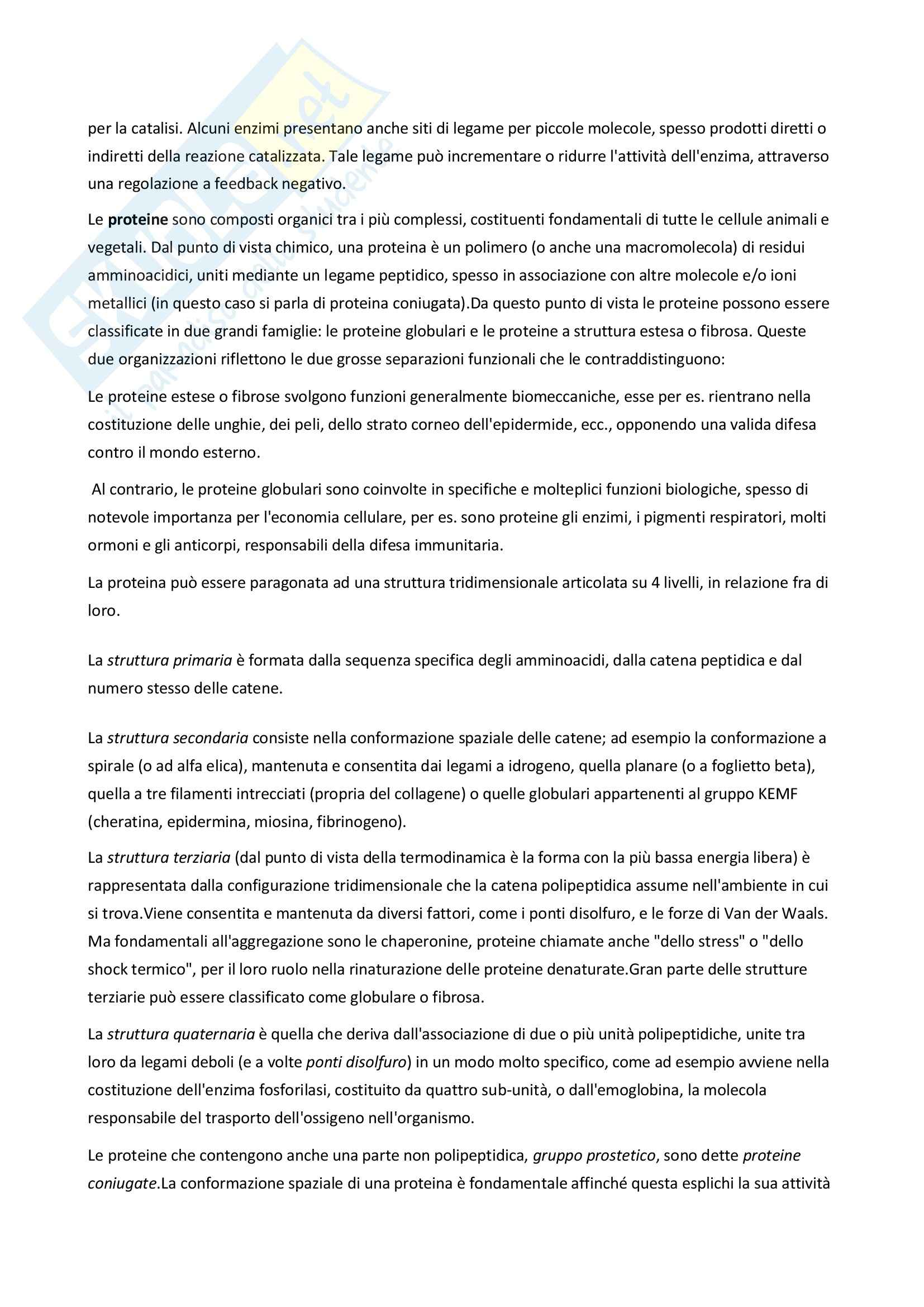 Biologia molecolare - Appunti Pag. 2