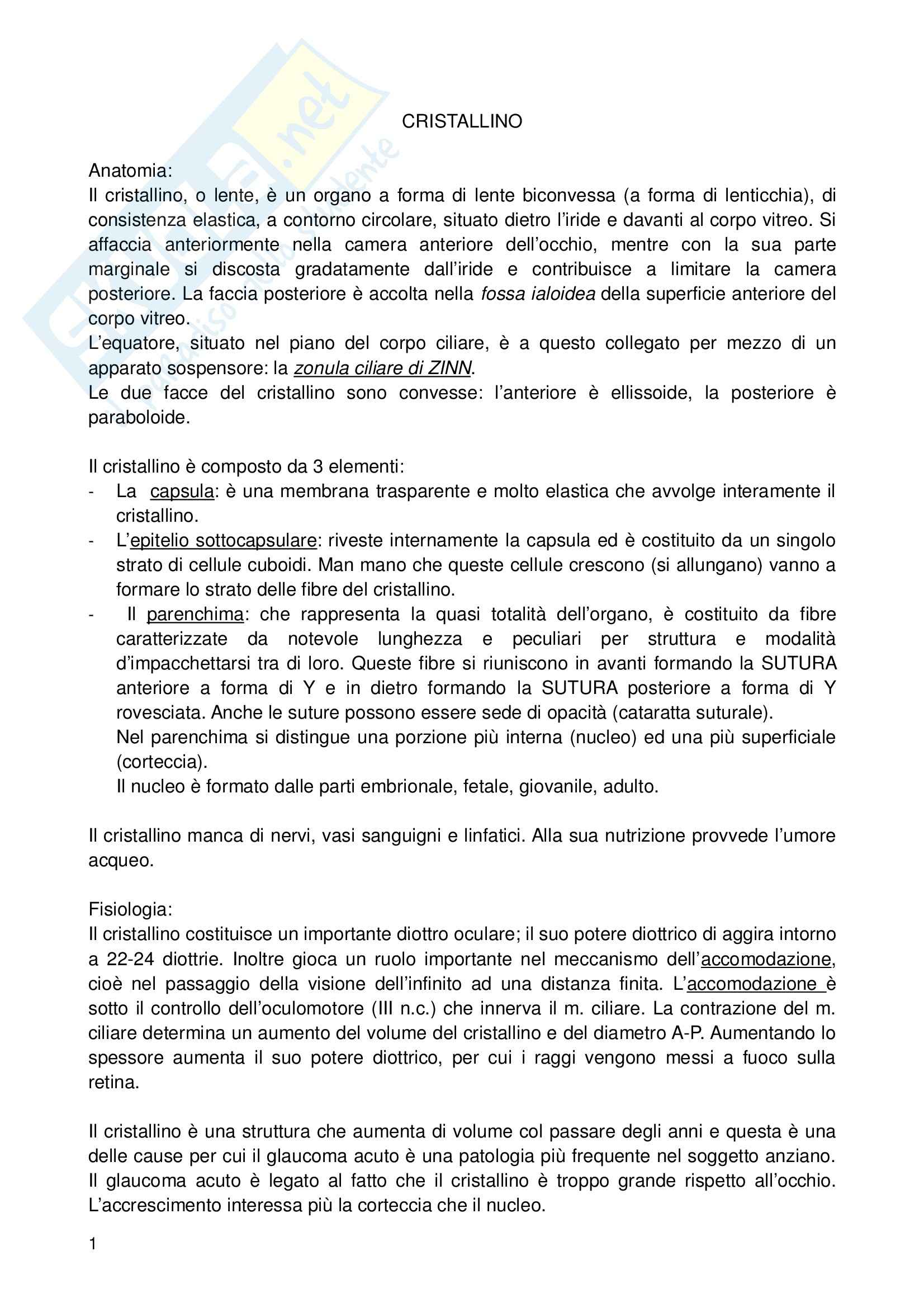 appunto G. Ferreri Oftalmologia