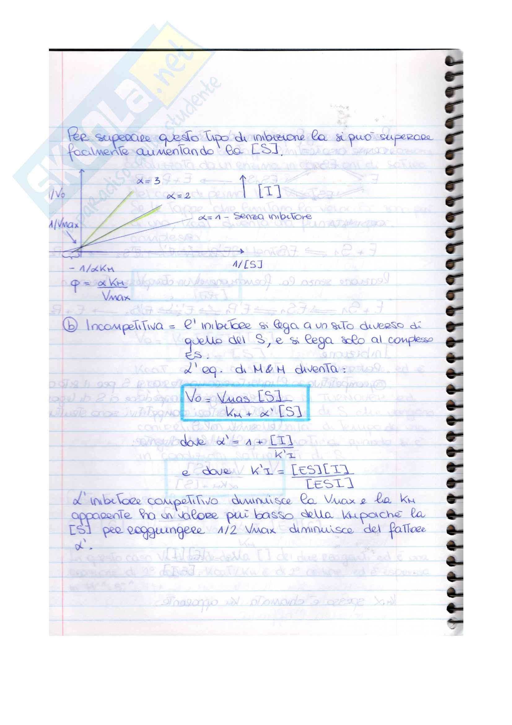 Esame di Biochimica (parte 2) Pag. 6