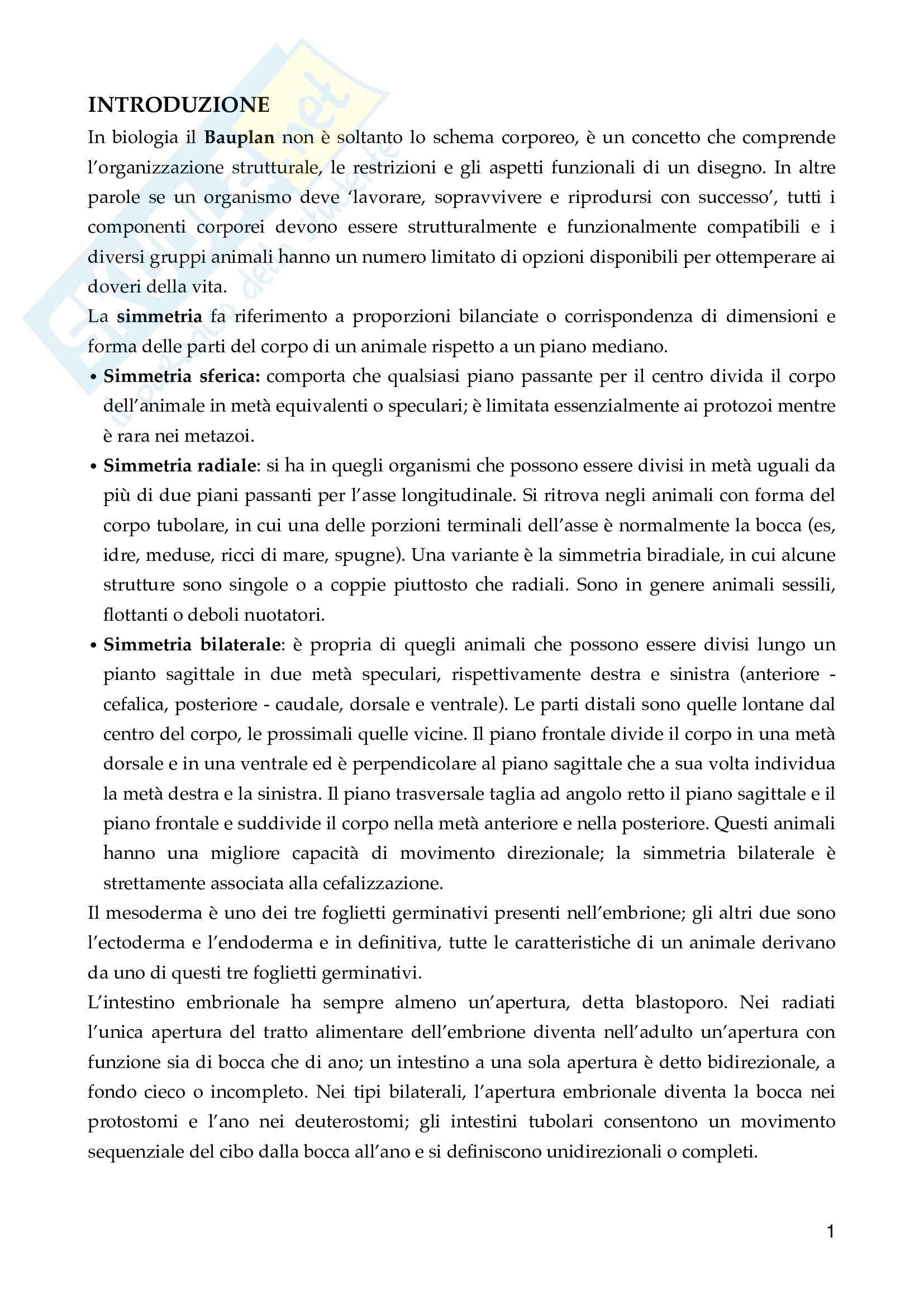 Zoologia Generale pdf