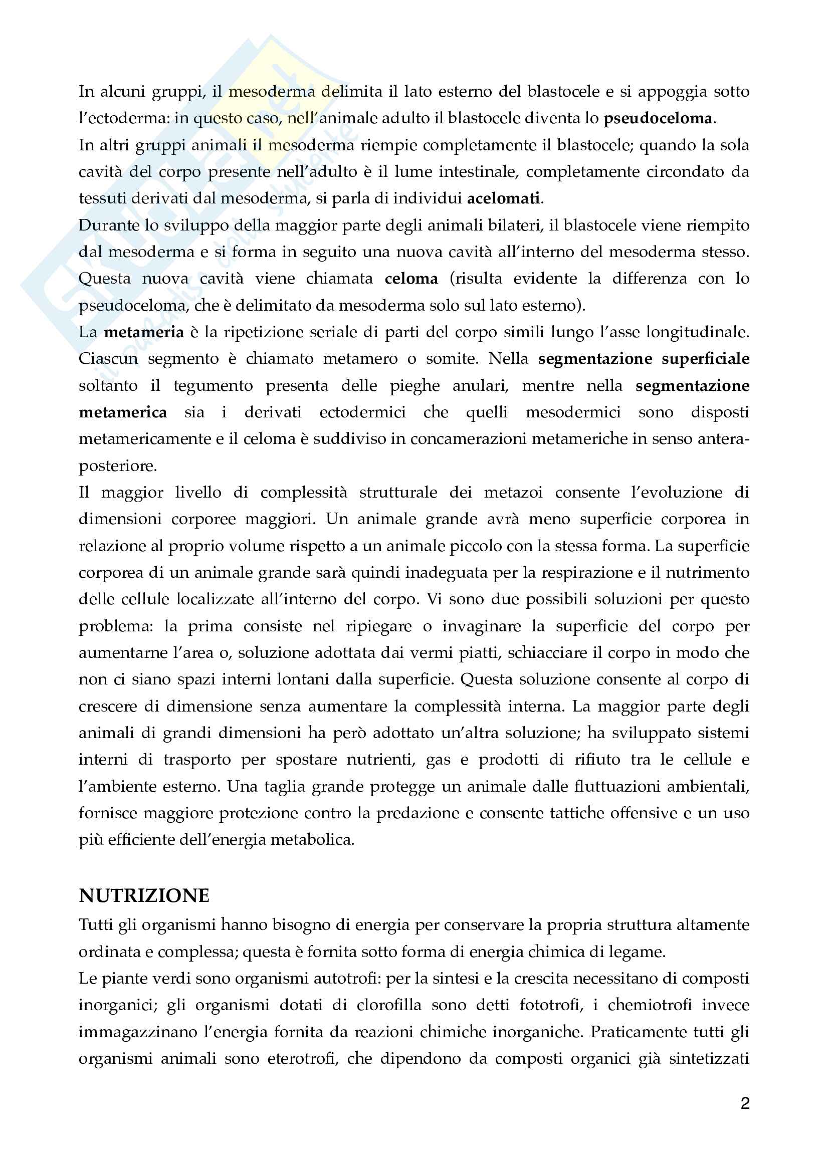 Zoologia Generale pdf Pag. 2