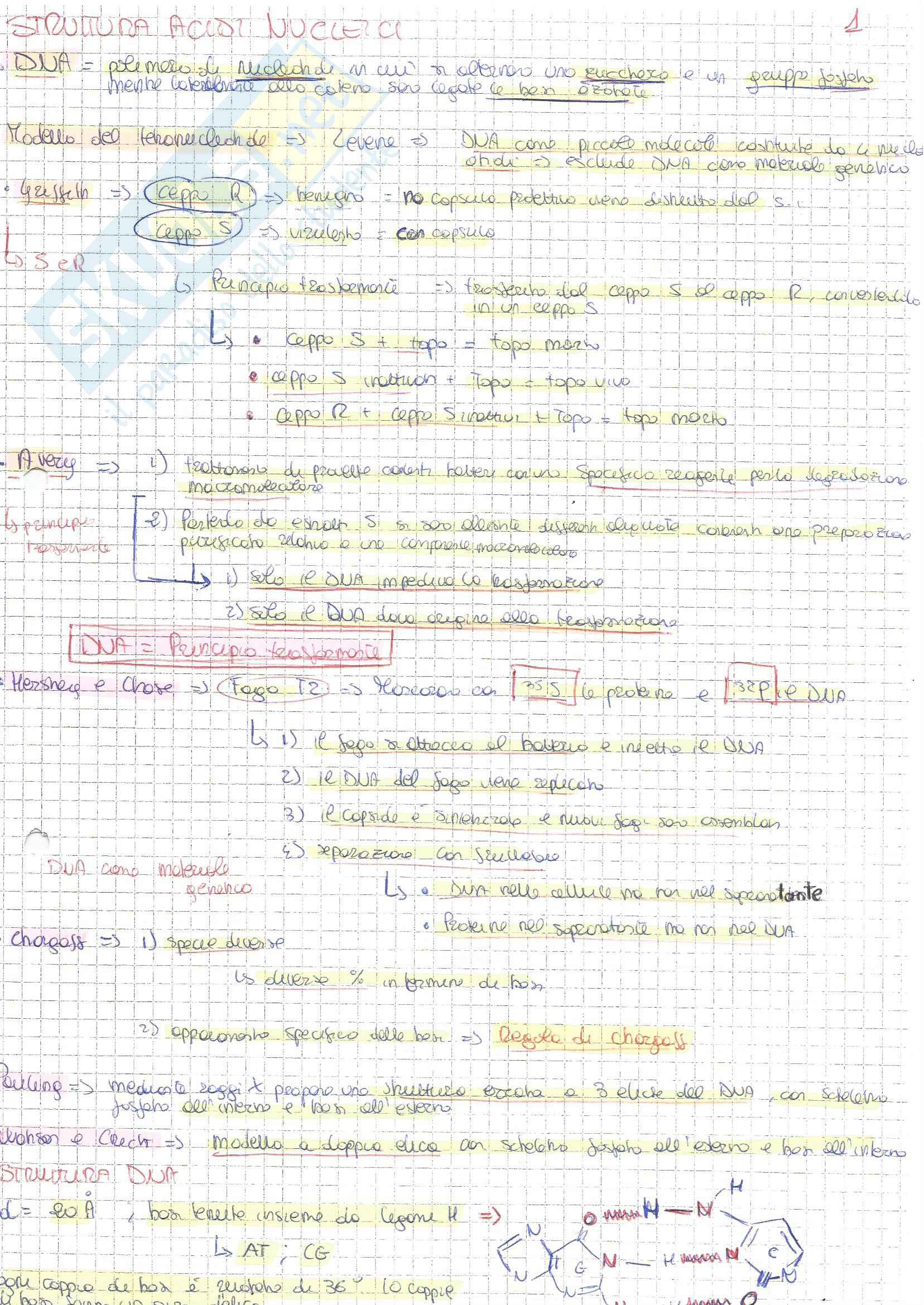 Bio molecolare