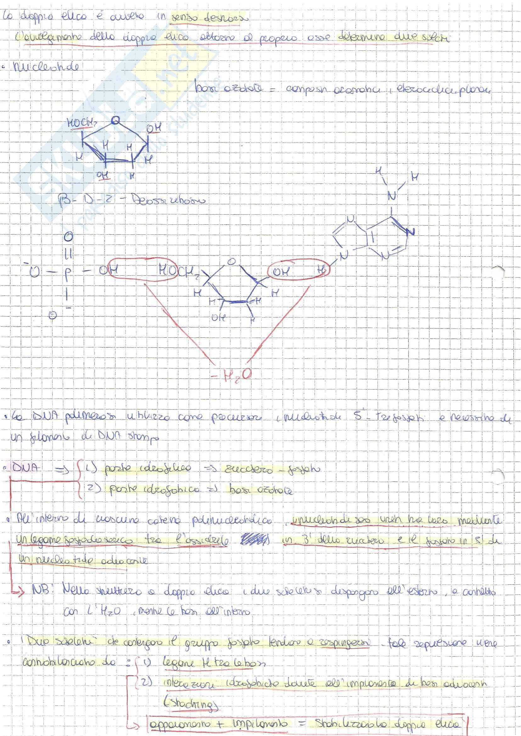 Bio molecolare Pag. 2