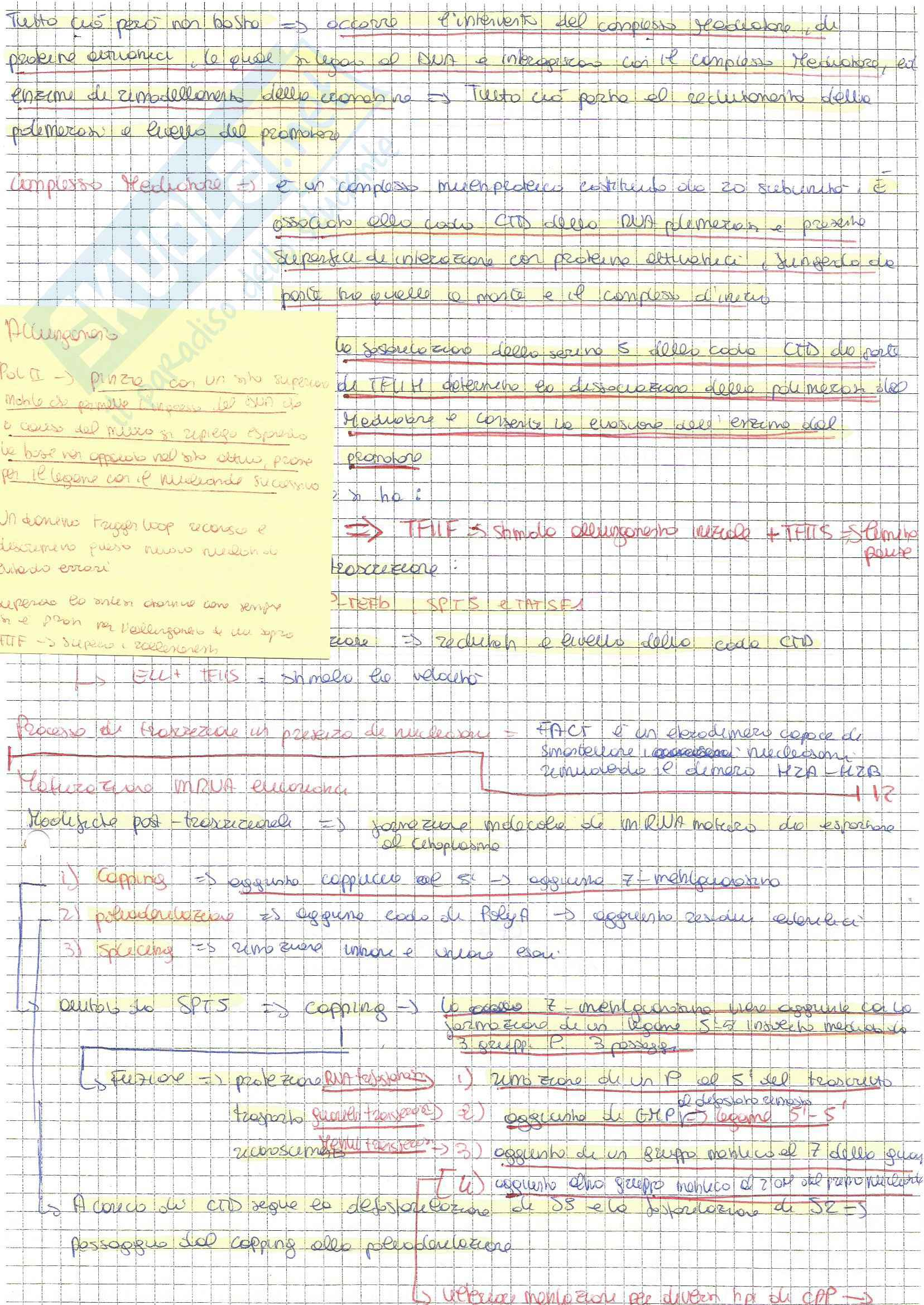 Bio molecolare Pag. 31