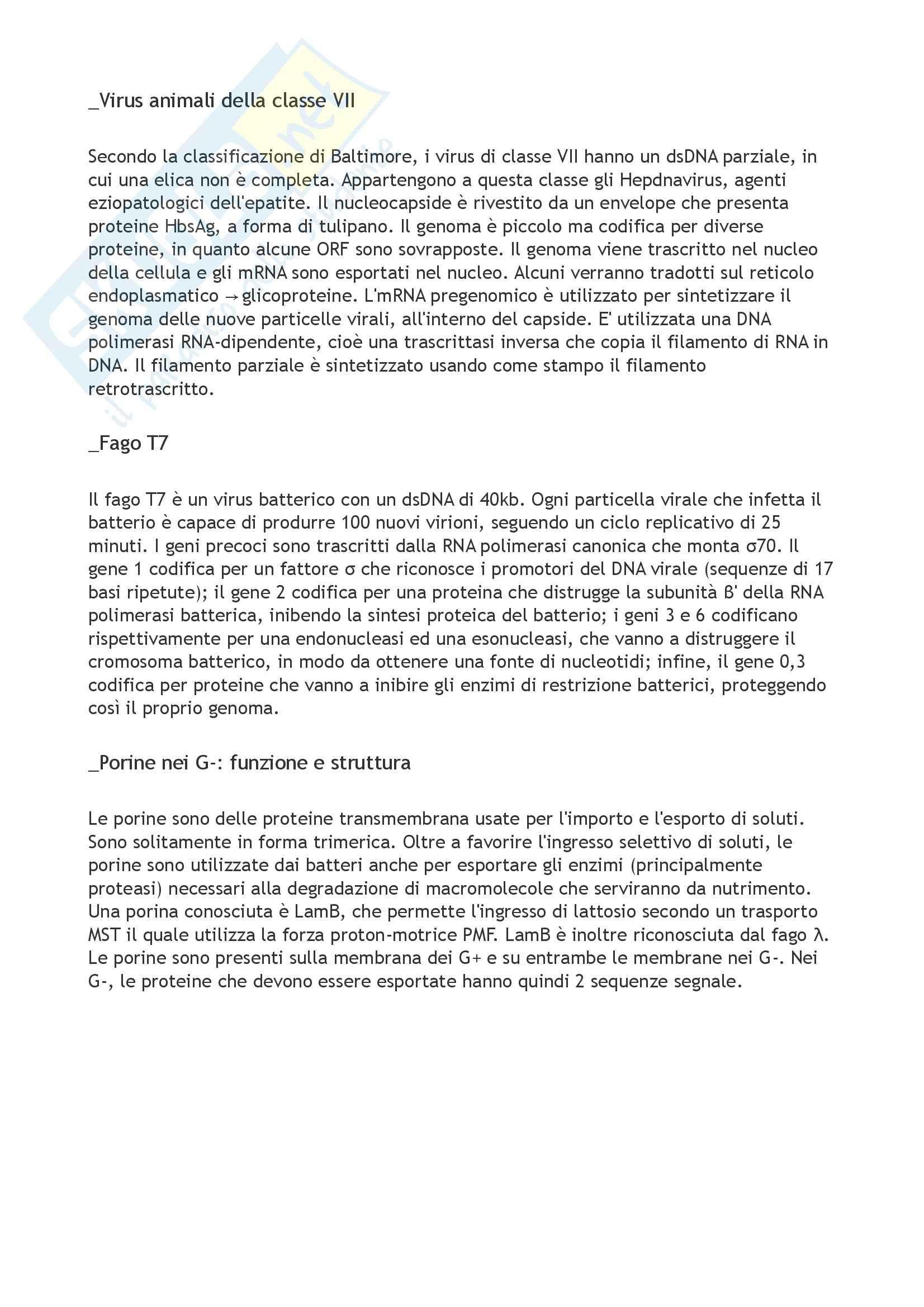 Domande e risposte, Microbiologia Pag. 11