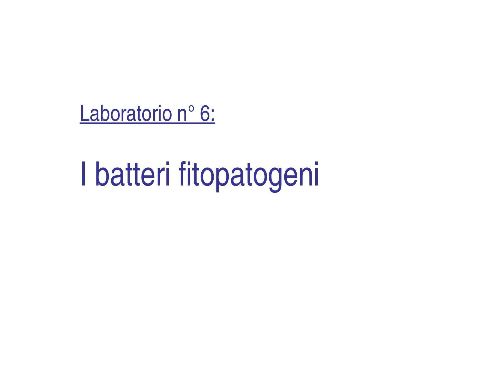 Batteri fitopatogeni