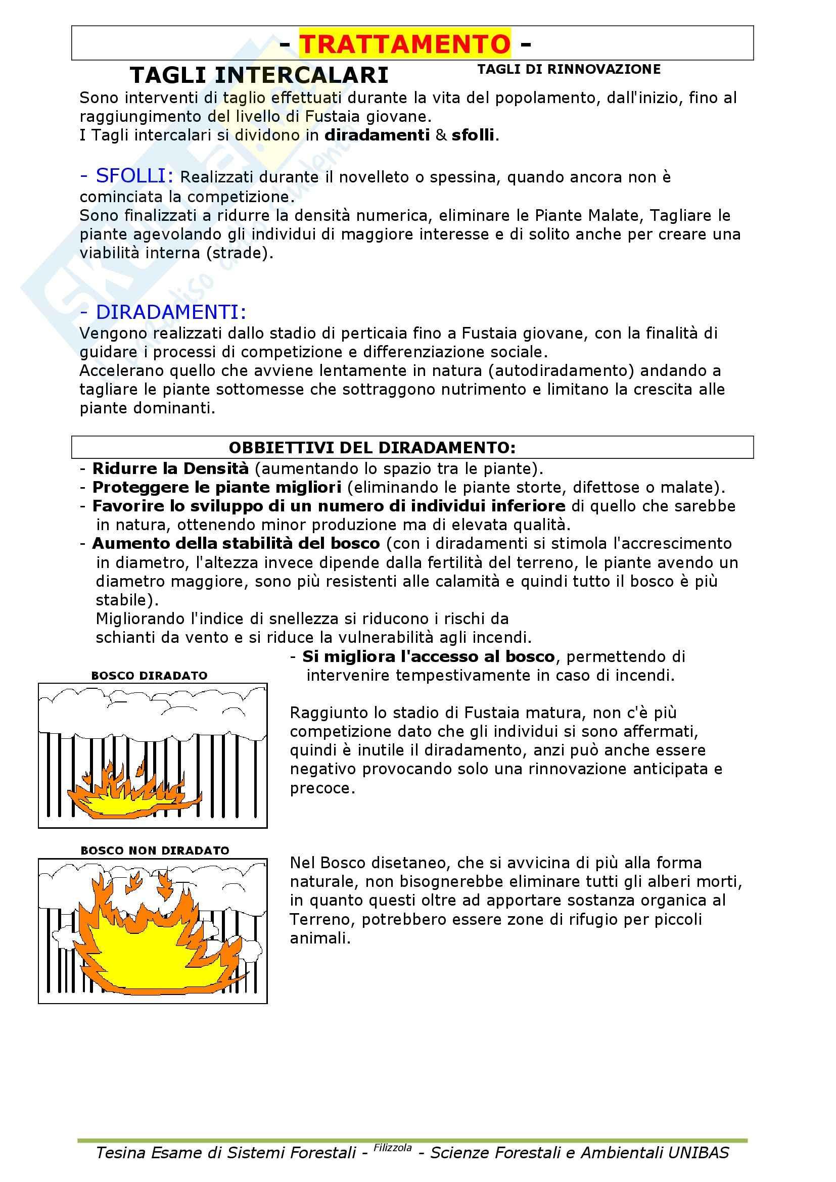 Selvicoltura generale e sistemi forestali - Appunti Pag. 36