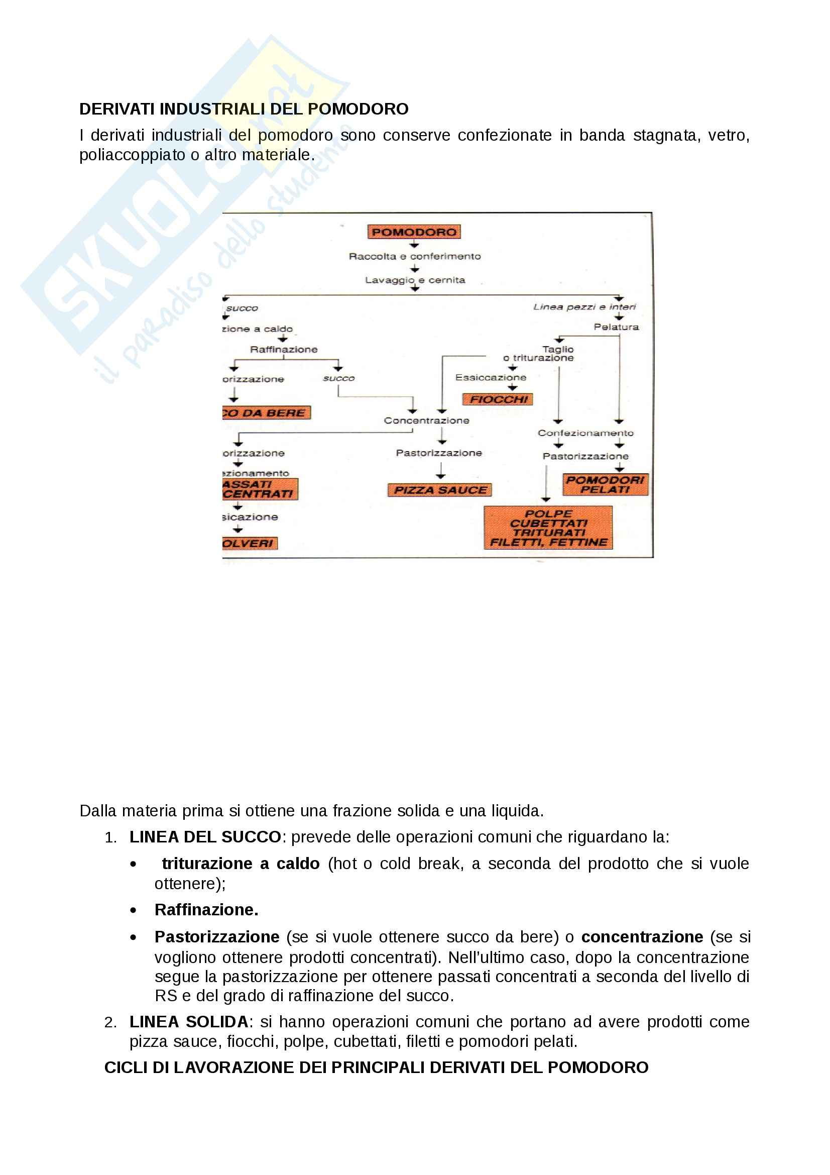 Processi delle industrie alimentari - conserve di pomodoro Pag. 6