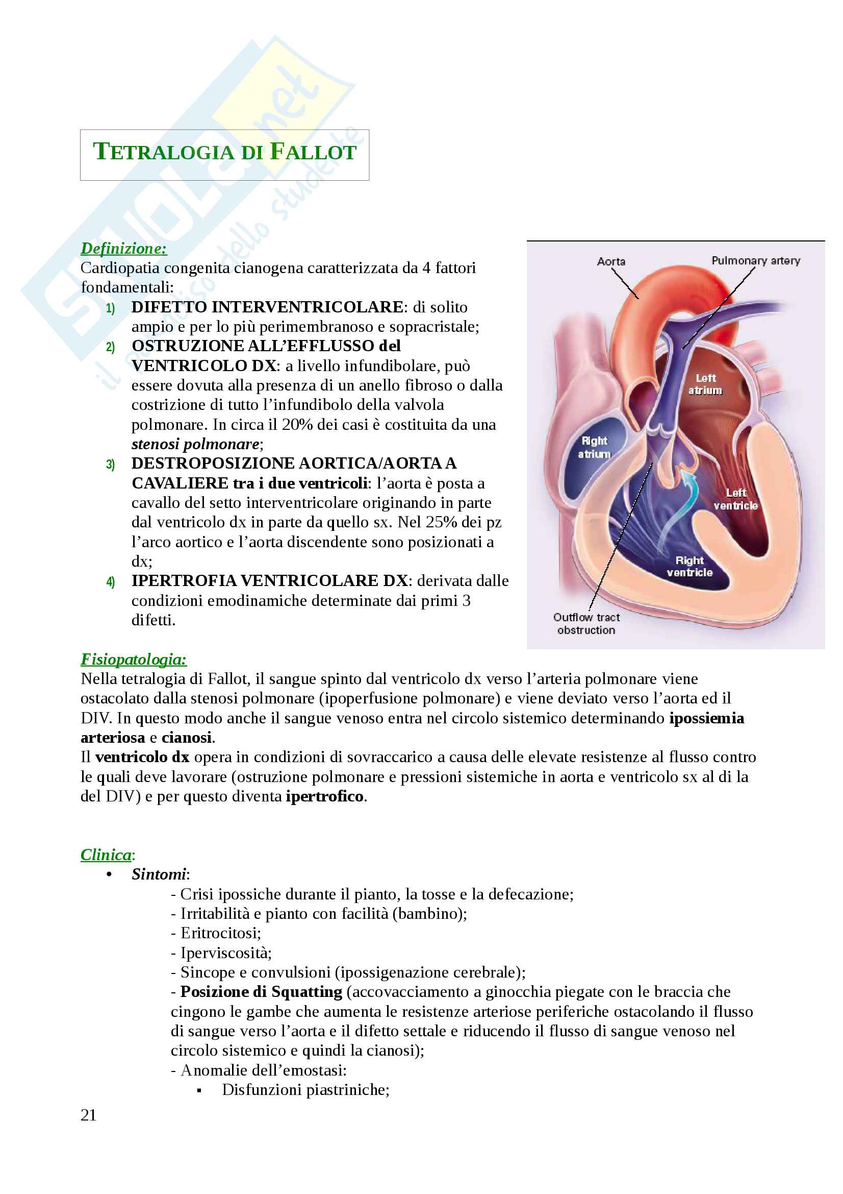 Cardiopatie congenite dell'adulto Pag. 21