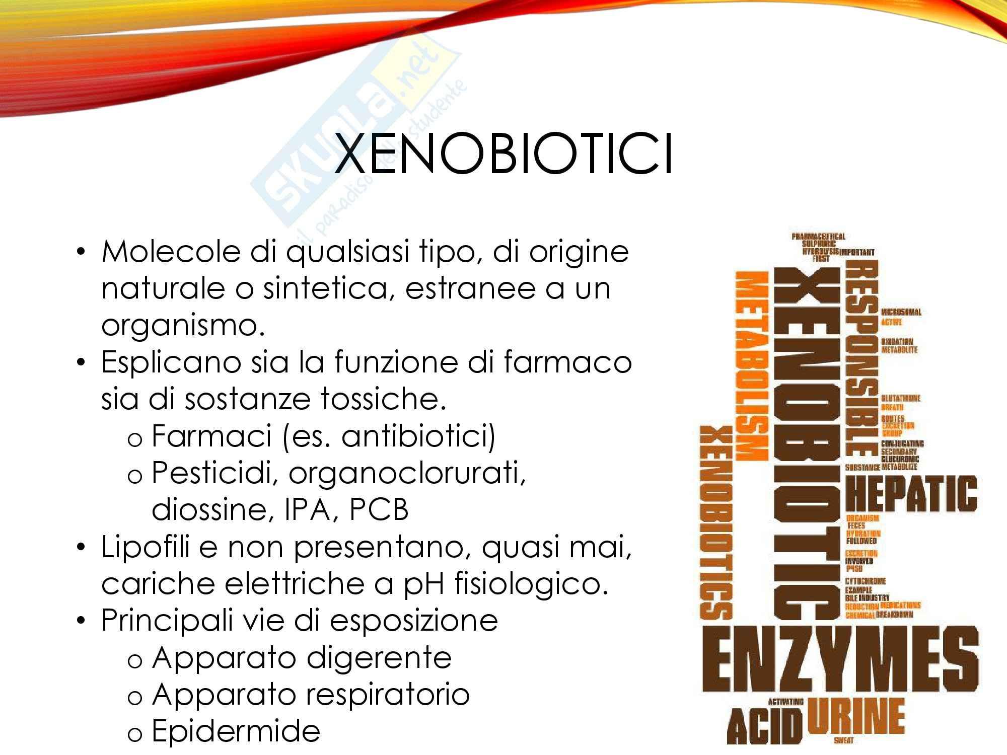 Metodologie di studio degli xenobiotici nei sistemi biologici, Biochimica ambientale Pag. 2