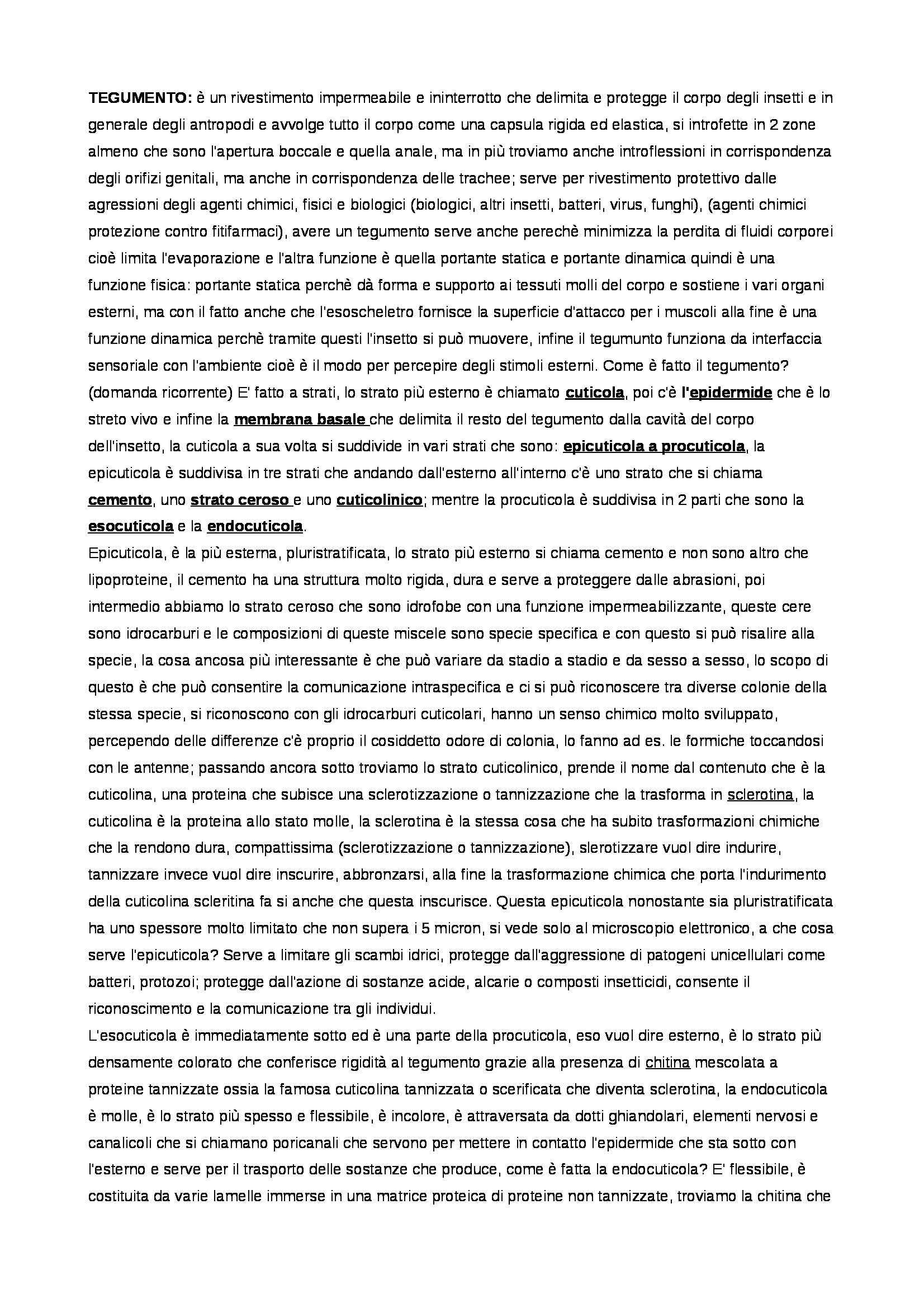 Entomologia - Appunti