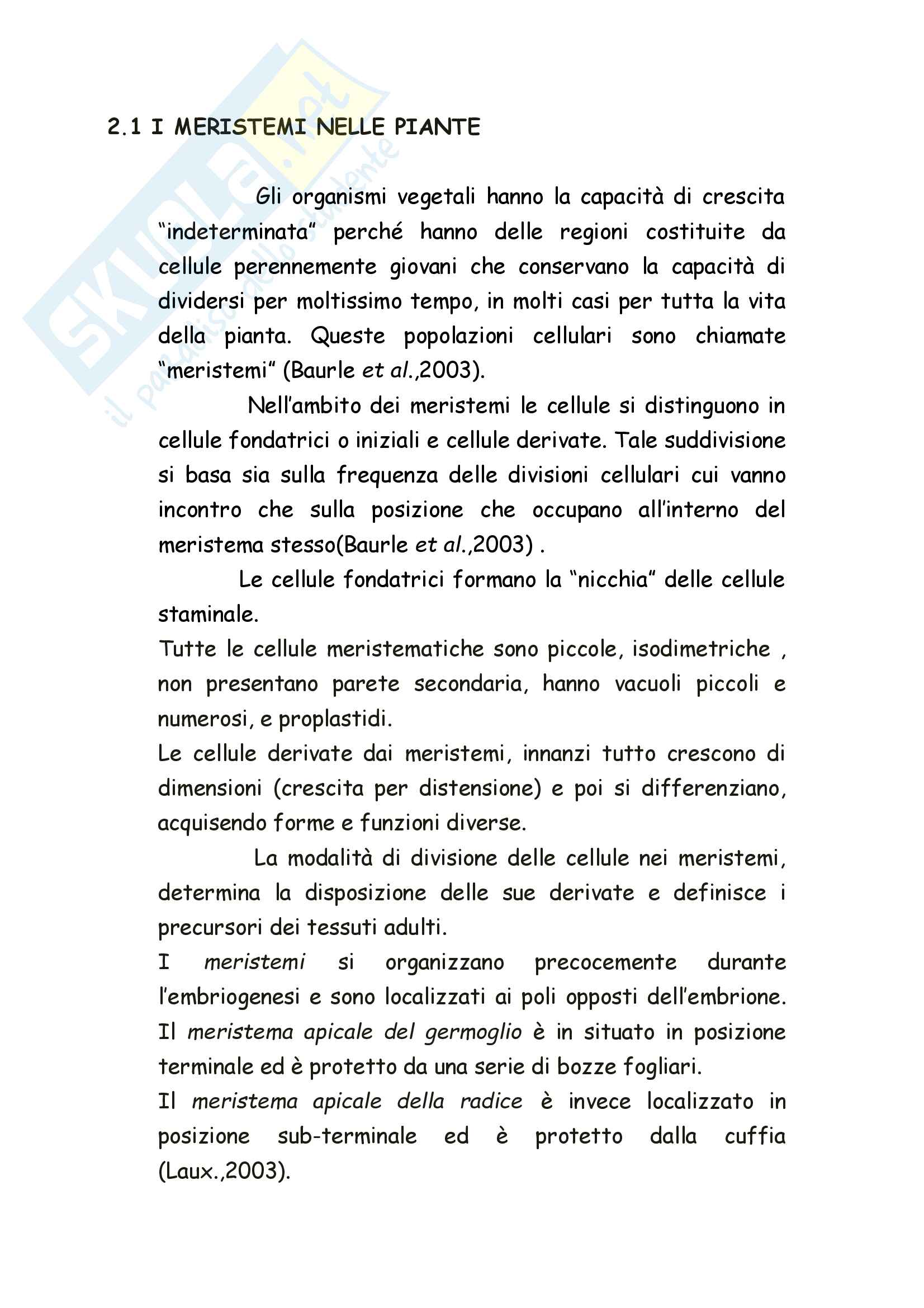 Tesi in Culture cellulari vegetali Pag. 6