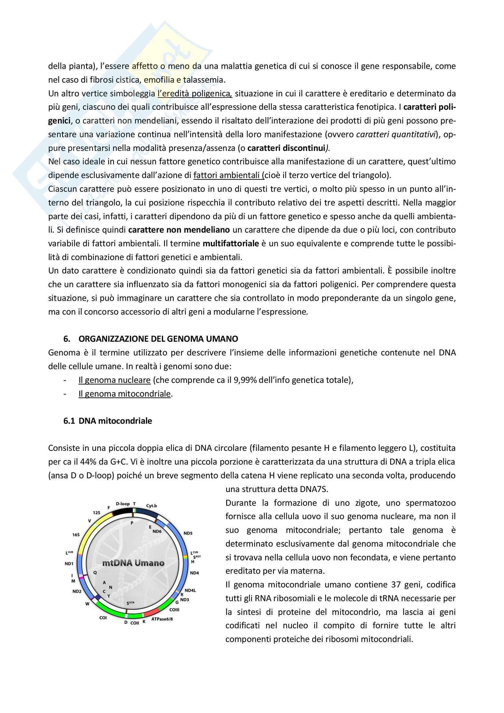 Lezioni, Genetica Pag. 6