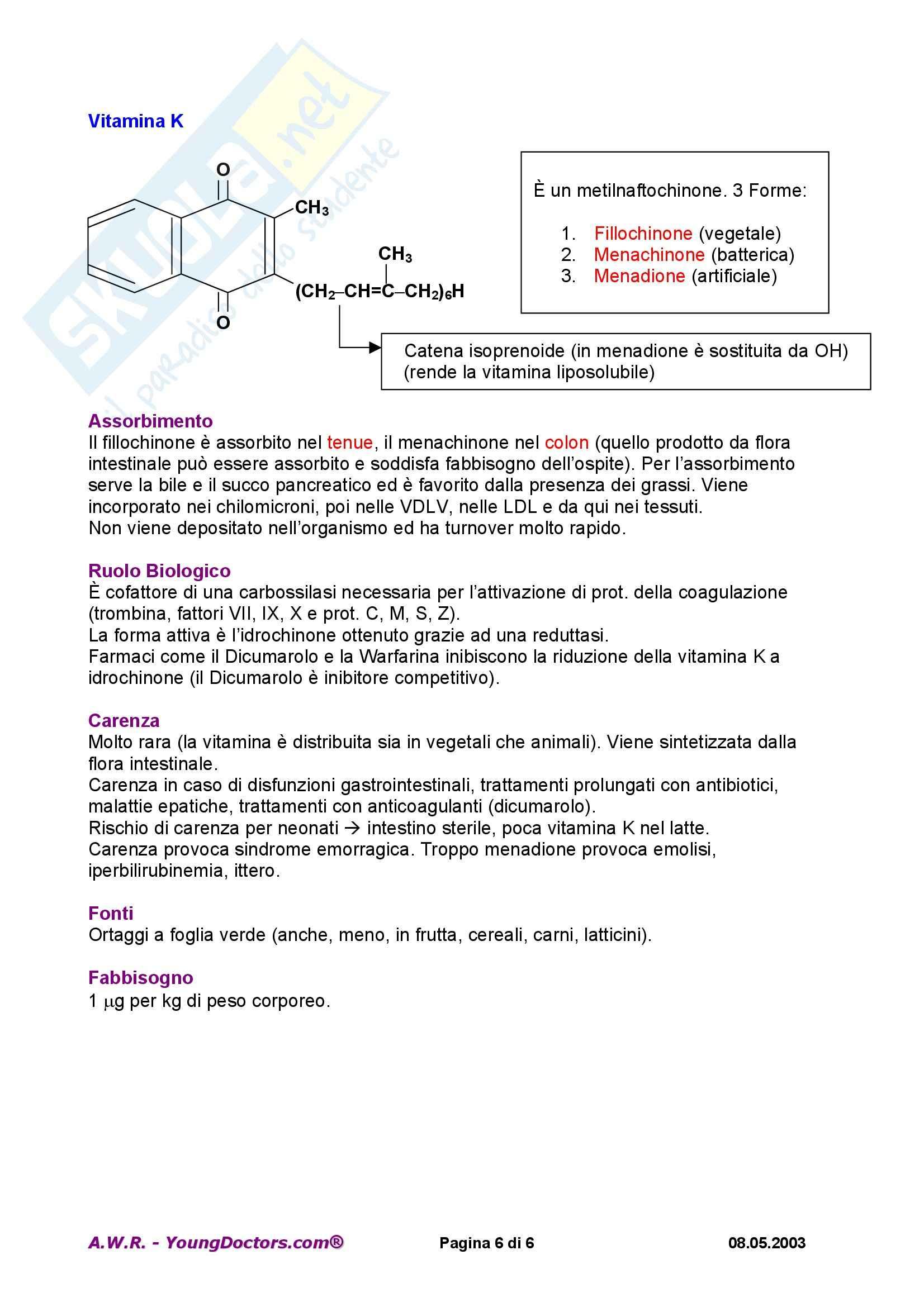 Biologia molecolare - vitamine liposolubili Pag. 6