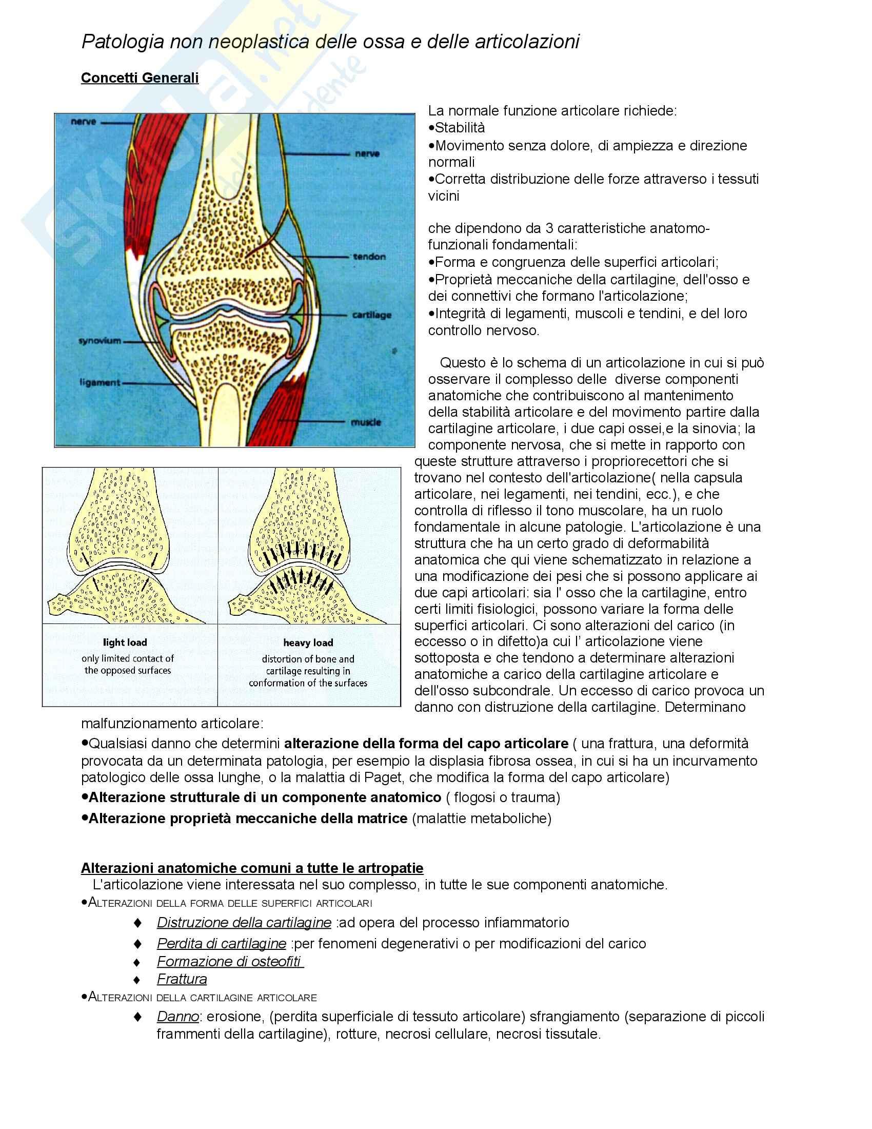 Anatomia Patologica - Patologia del connettivo Pag. 6