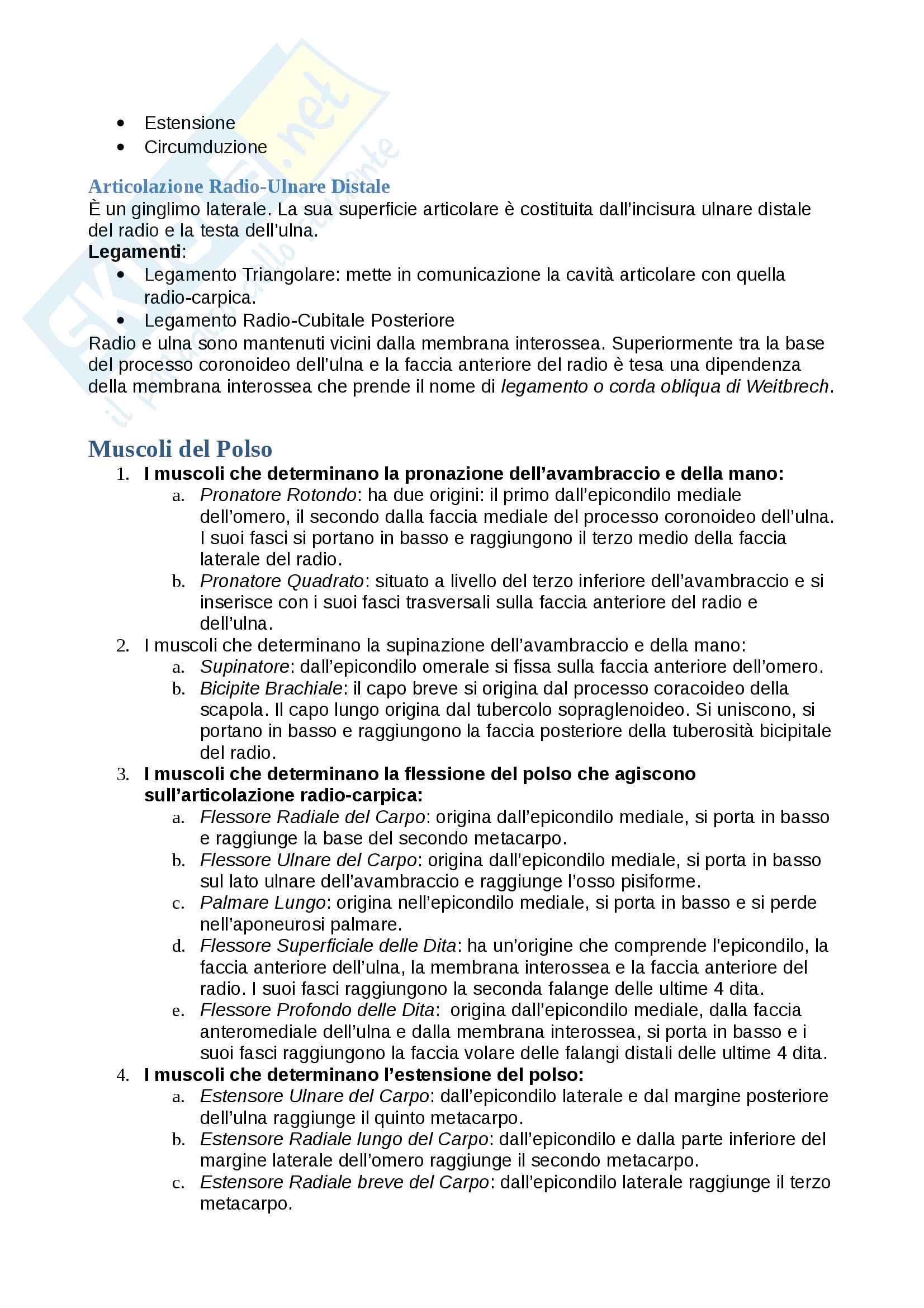 Schema: Appunti Arto Superiore Pag. 11