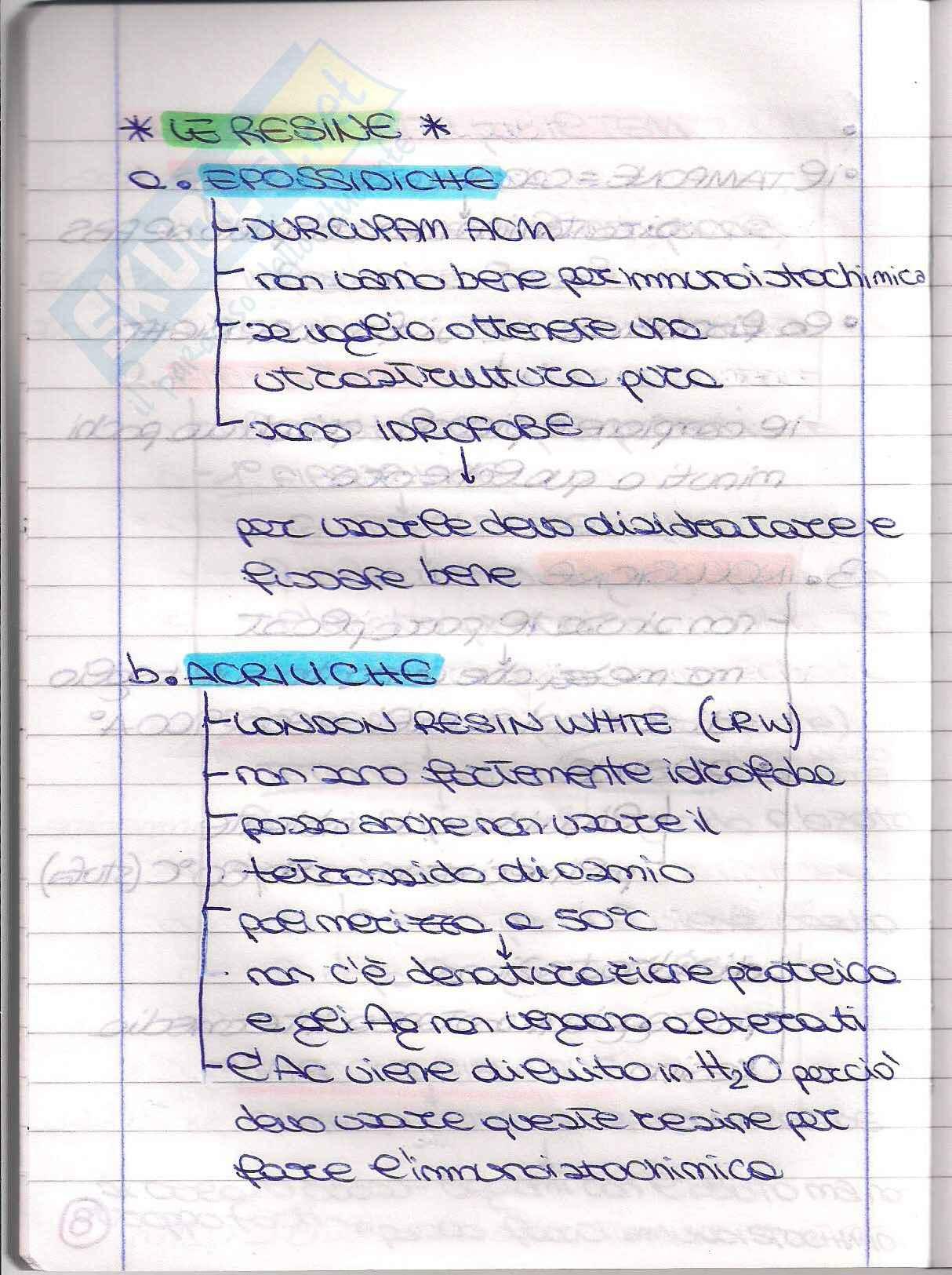 Struttura e Funzione dell'apparato Riproduttore - Appunti Pag. 16