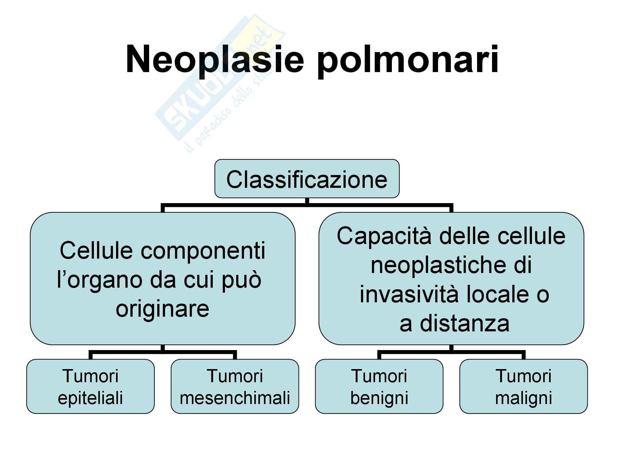 Malattie dell'apparato respiratorio - Neoplasie Polmonari