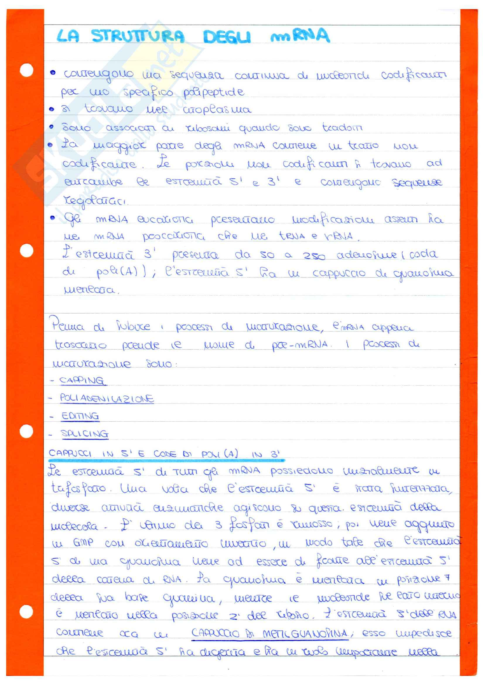 Molecole biologiche - DNA - duplicazione - trascrizione - traduzione Pag. 26