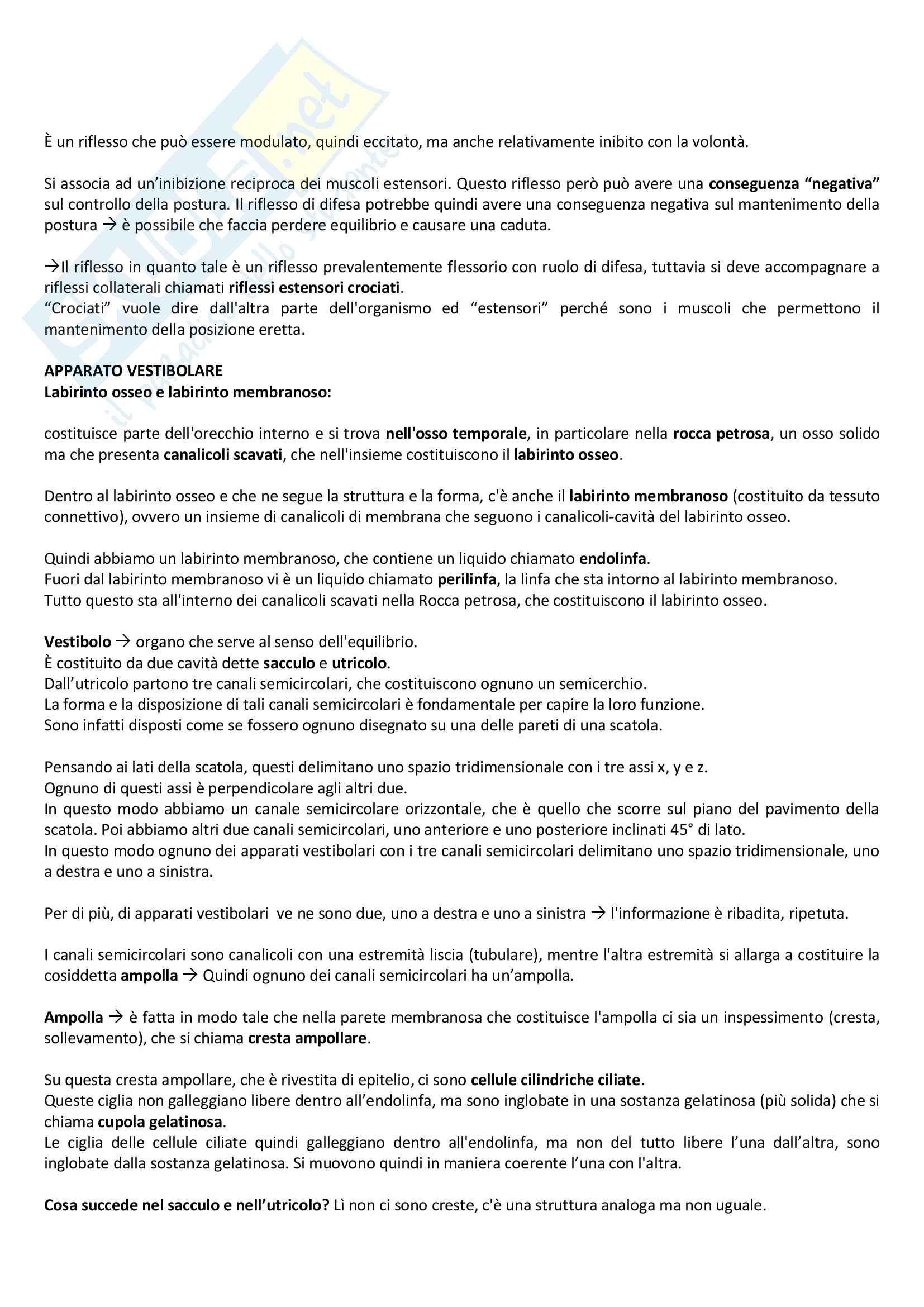 Neurofisiologia Pag. 31