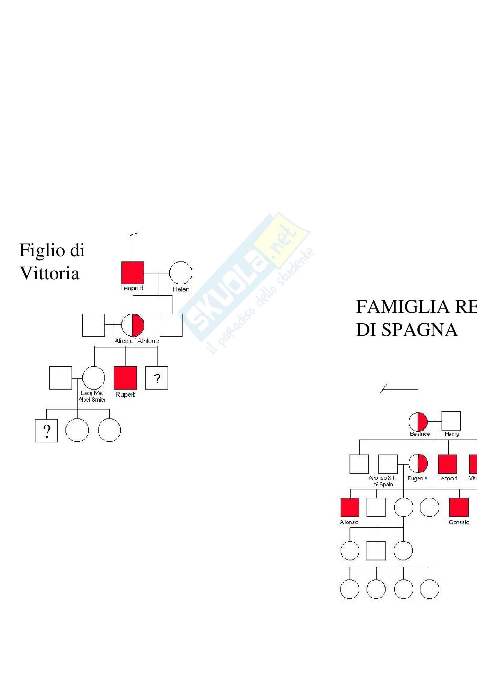 Biologia molecolare - malattie X-Linked recessive Pag. 26