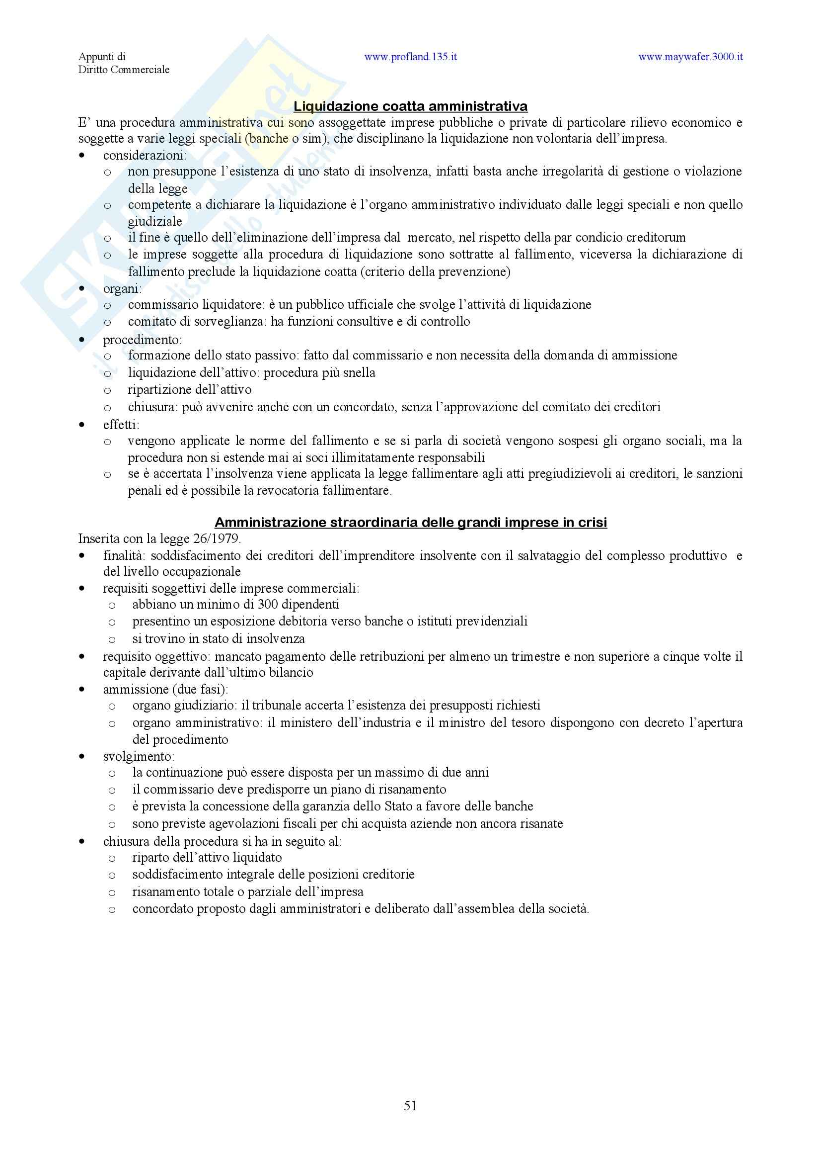 Diritto commerciale - nozioni generali Pag. 51