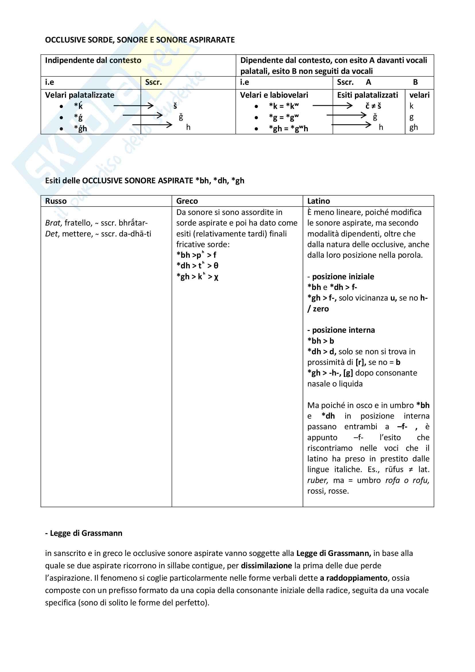 Riassunto esame Glottologia, Fanciullo, libro consigliato Manuale di linguistica storica, Fanciullo Pag. 11