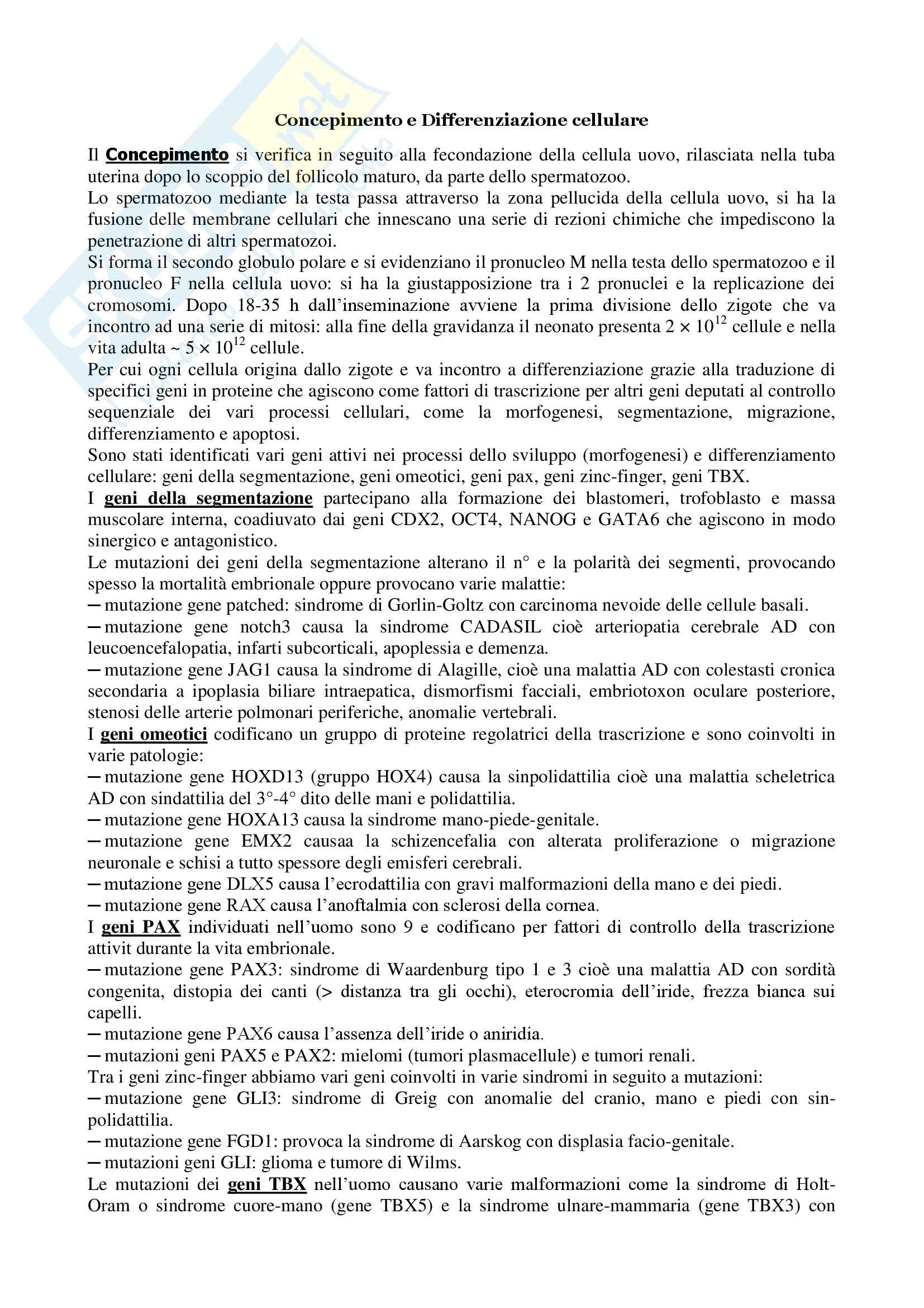 dispensa F. Pietropaolo Ginecologia e Ostetricia