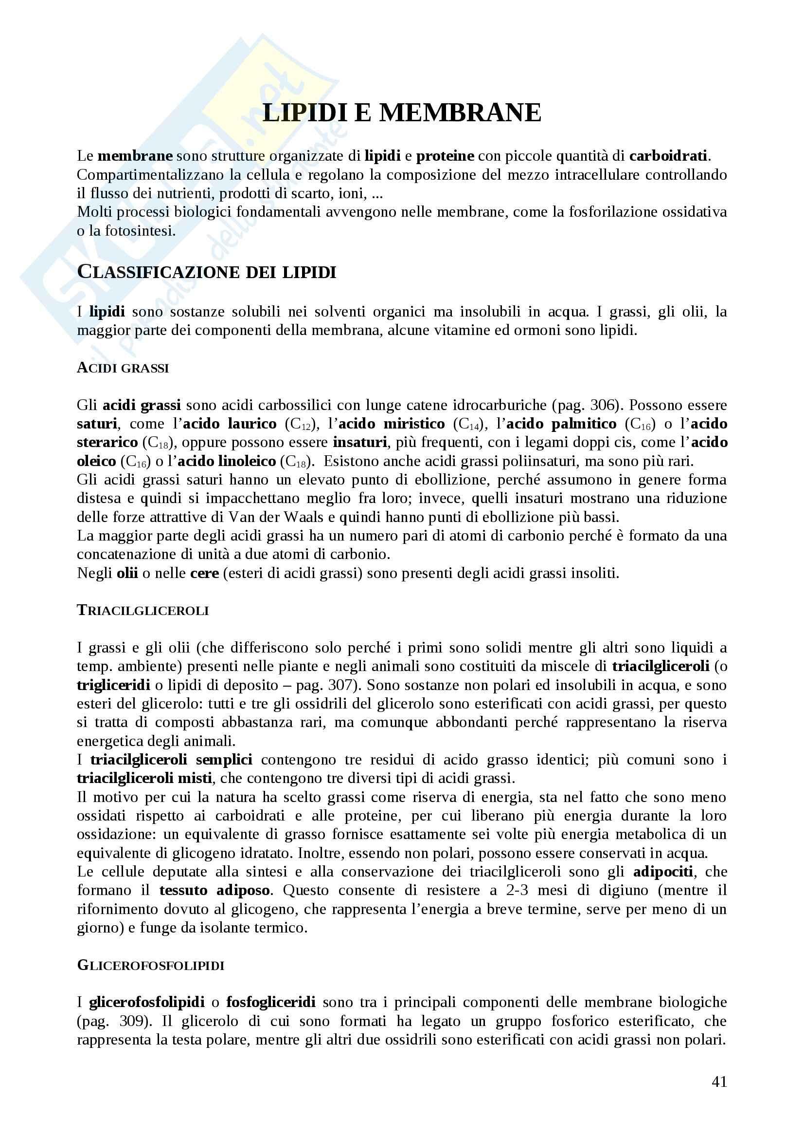 Riassunto esame Biochimica, prof. Ascenzi, libro consigliato Biochimica, Voet & Voet, ediz 2005 Pag. 41