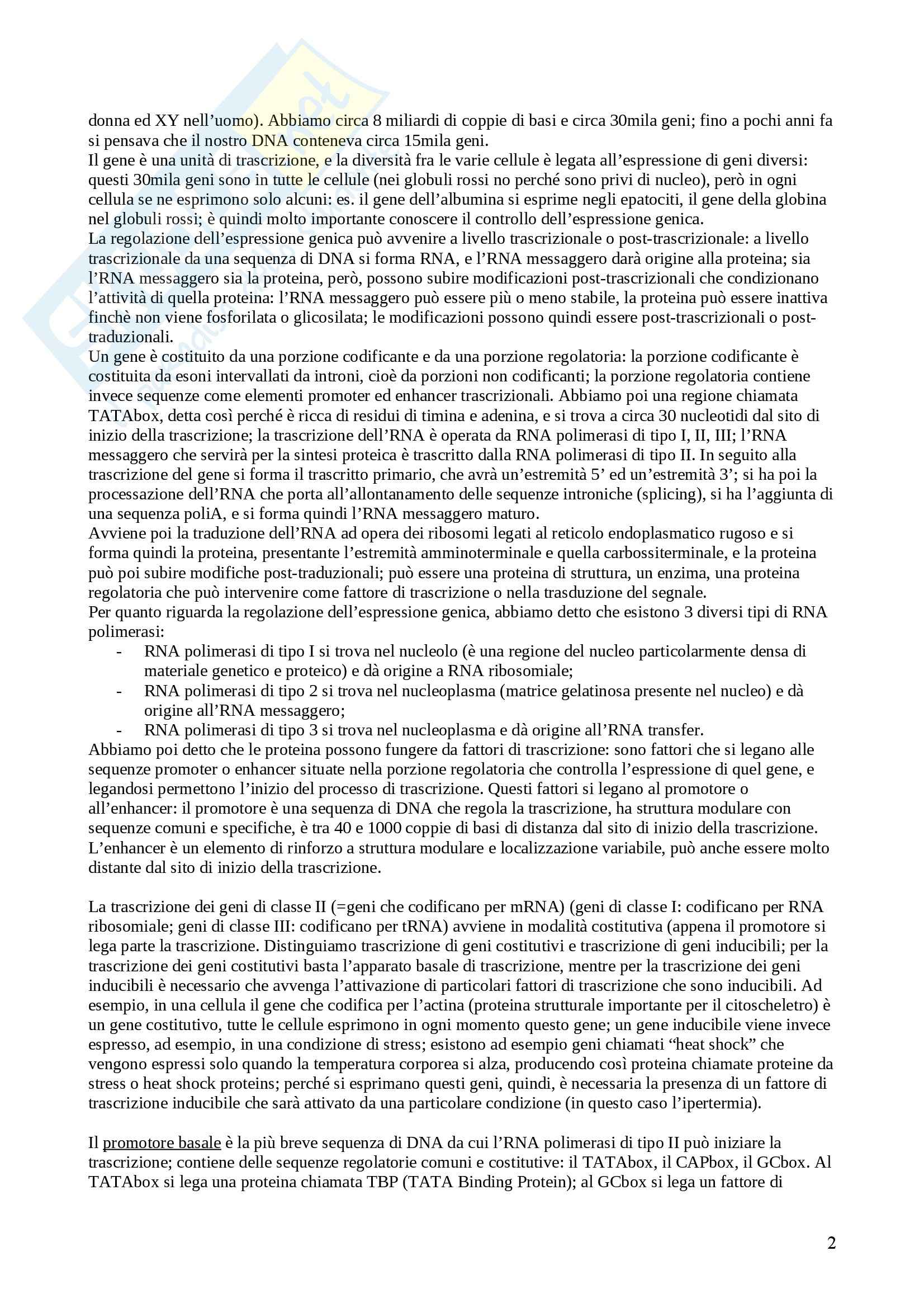 Patologia generale - appunti intero corso Pag. 2