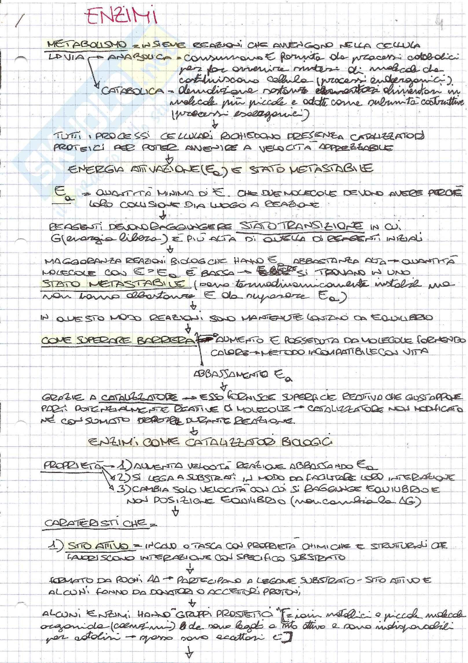 Schemi di biologia generale e cellulare per l'esame della prof. Patrizia Limonta sugli enzimi
