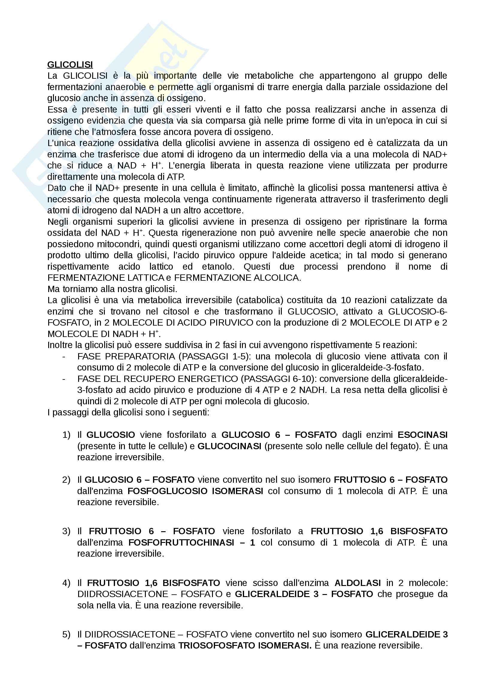 Biochimica per Infermieristica Pag. 2