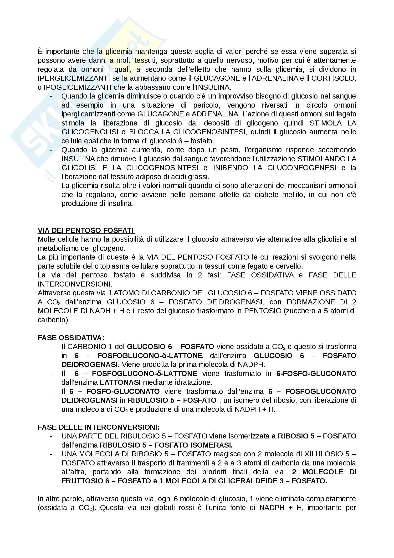 Biochimica per Infermieristica Pag. 6
