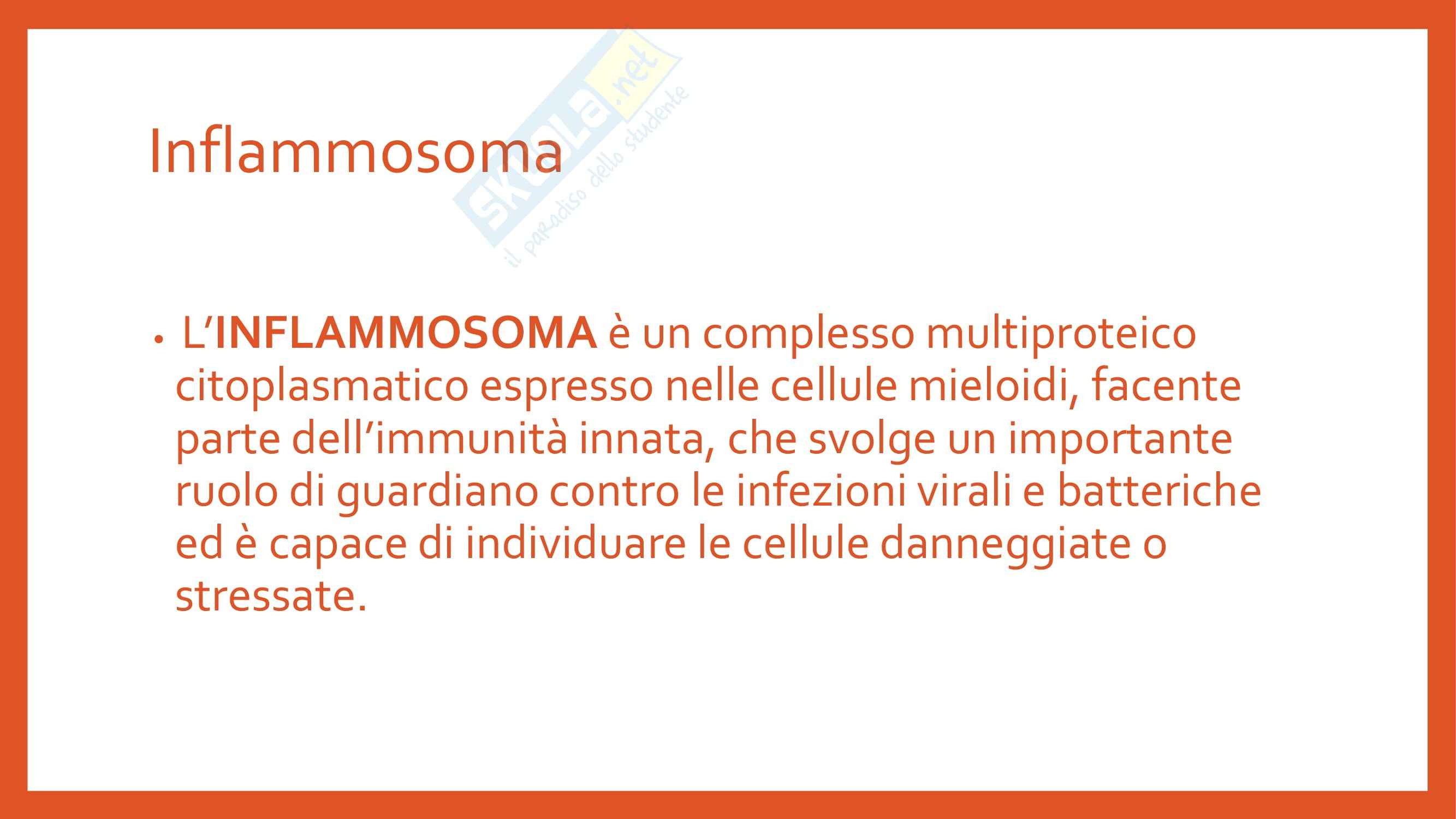 Immunologia - Inflammosoma Pag. 2
