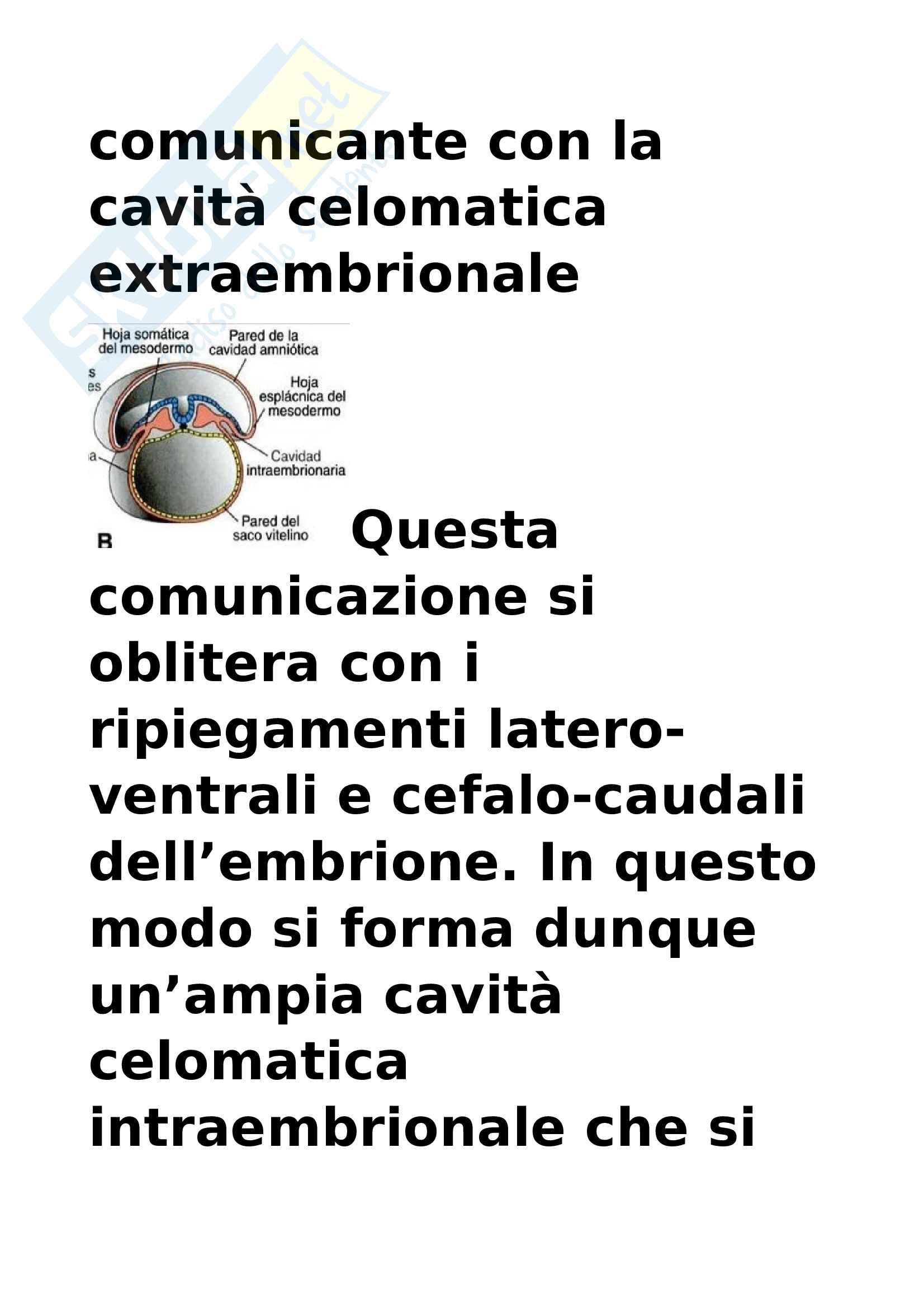Cavità corporee, membrane sierose e diaframma Pag. 2