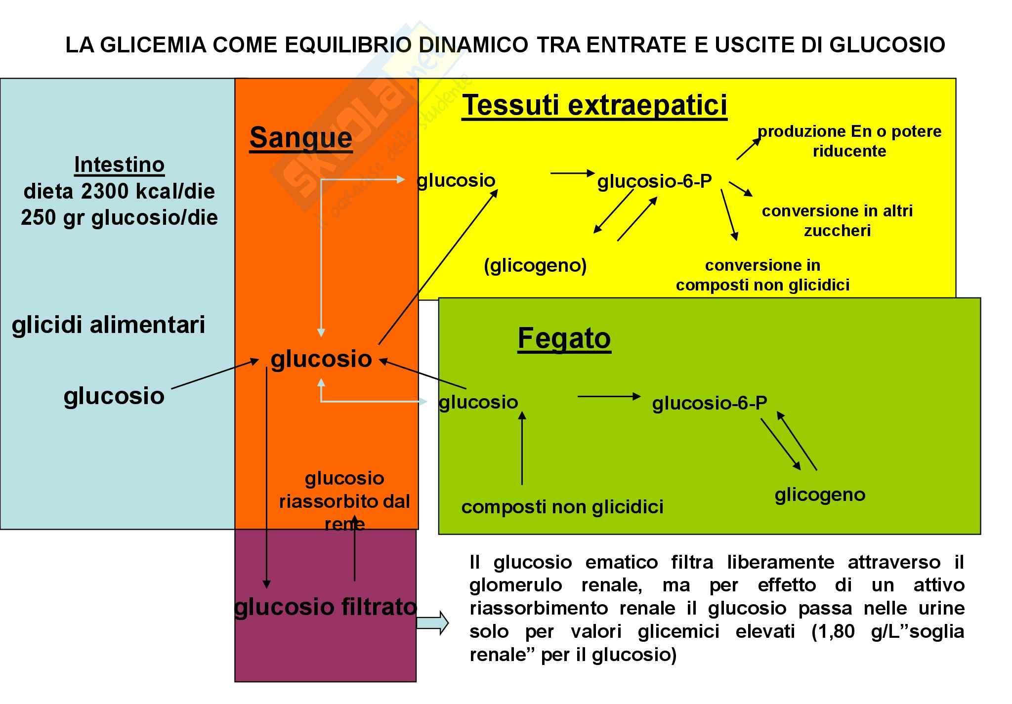 appunto M. Pazzagli Metodologia Clinica