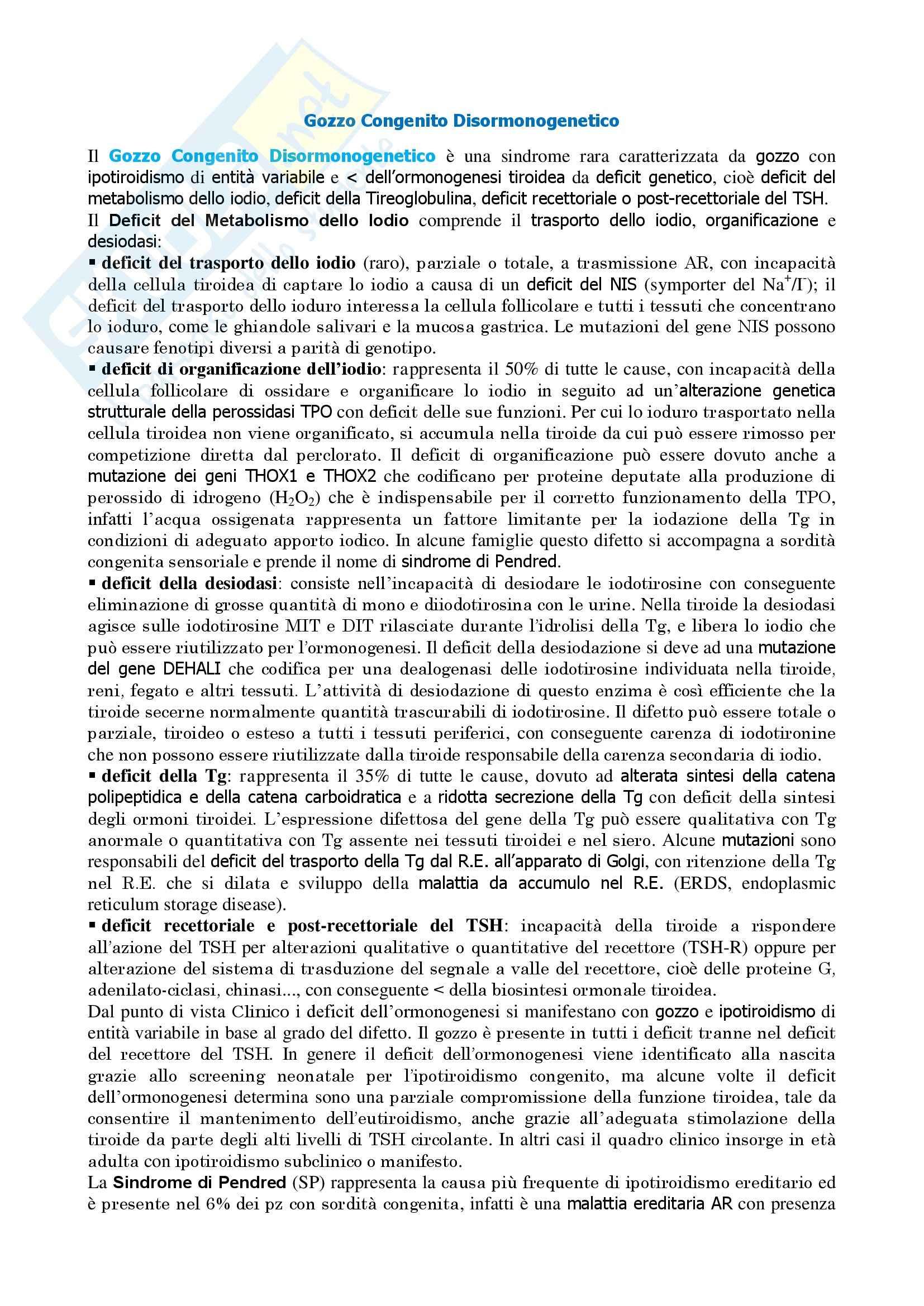 Endocrinologia - gozzo congenito disormonogenetico