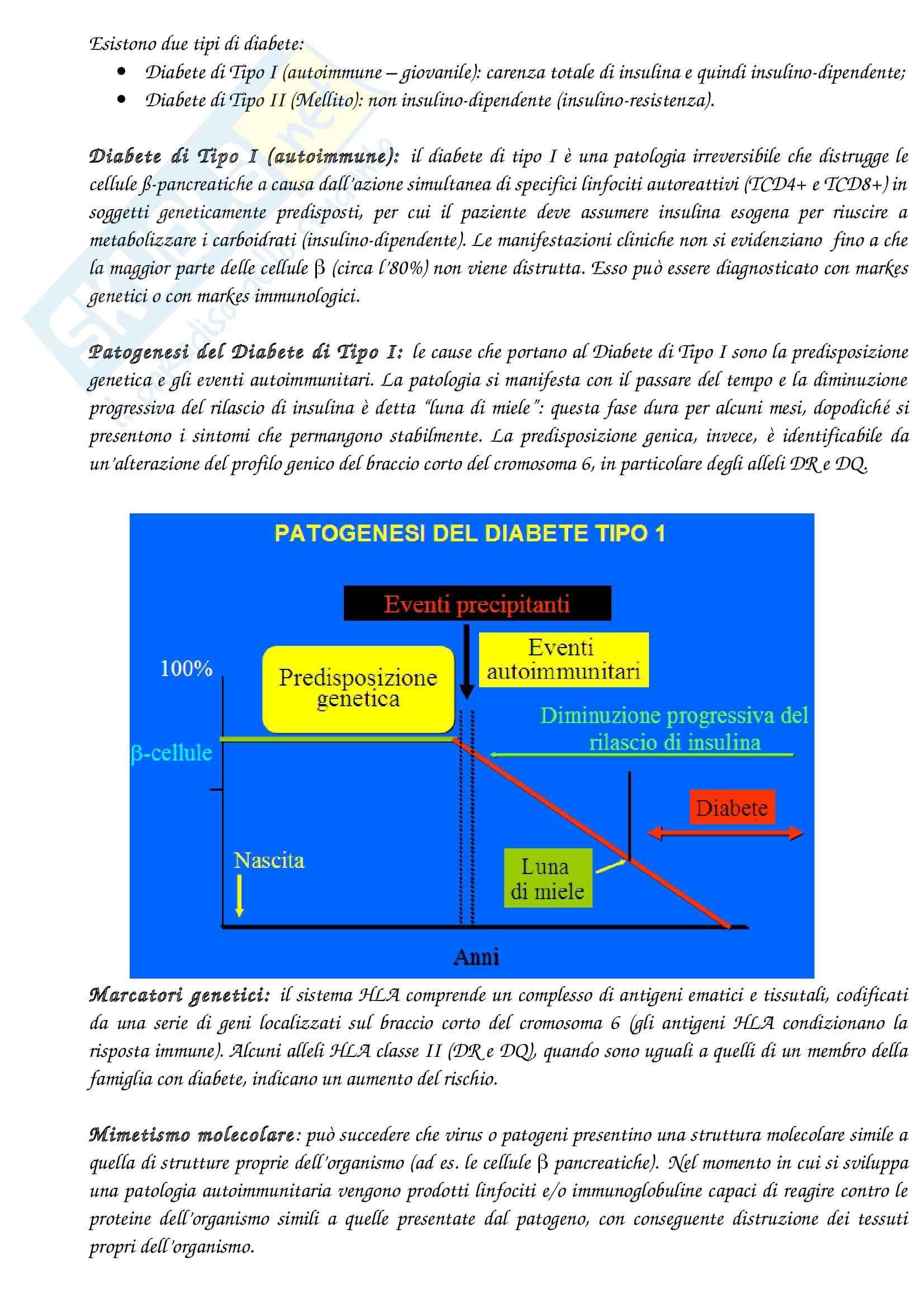 Lezioni, Biochimica Clinica Pag. 11